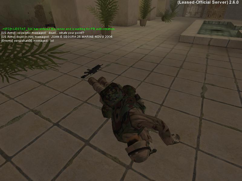 'Dead in Iraq'