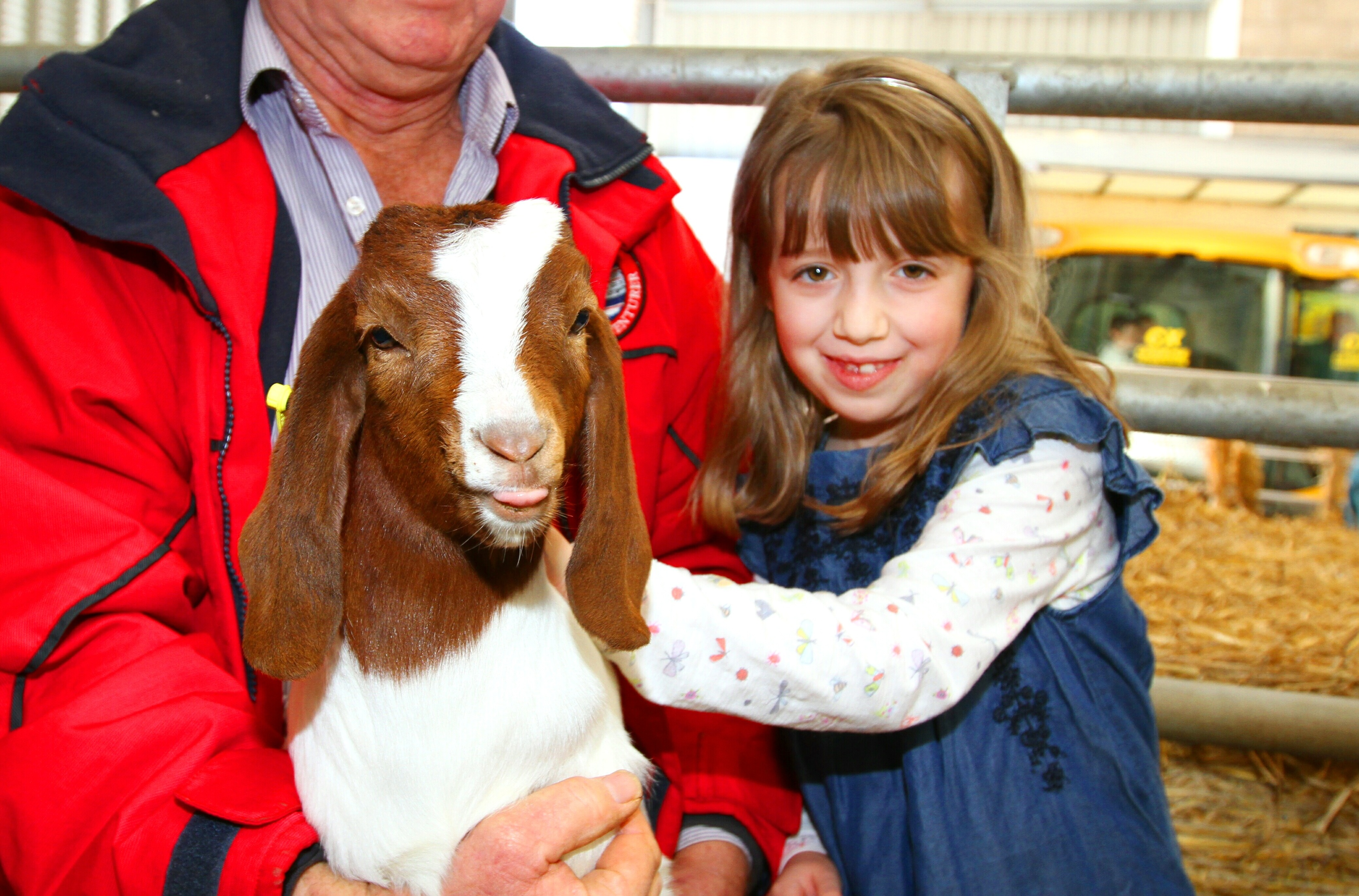 Eight-year-old Alice Miller-Richardson from Monikie with a Boer Goat at the event