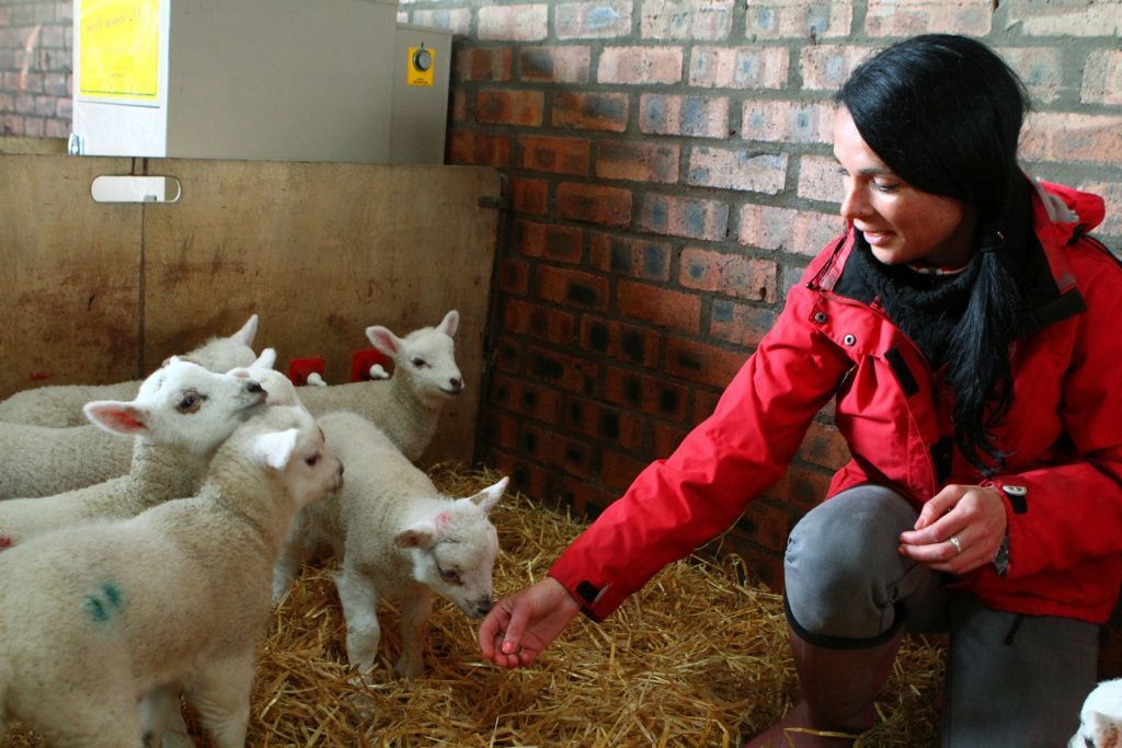 Gayle with some of the new lambs.