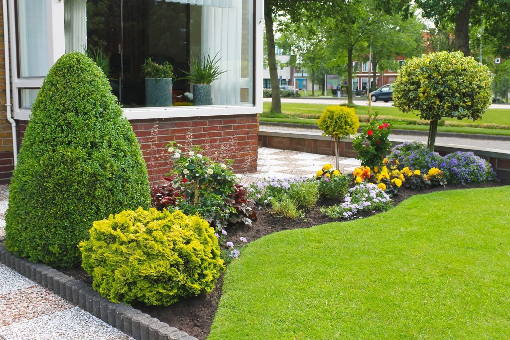 Are the days of the perfect lawn numbered?