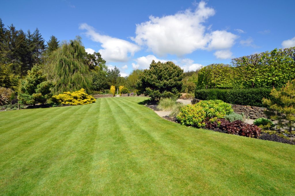 A beautiful English country garden, a beautiful lawn edged by colourful borders.