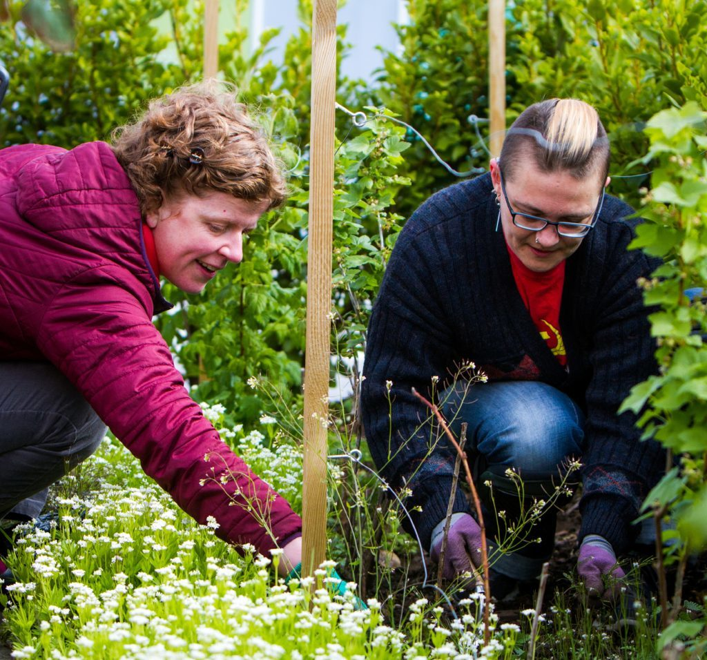 Sarah Gittins (left) and Shonagh Glen do some weeding.