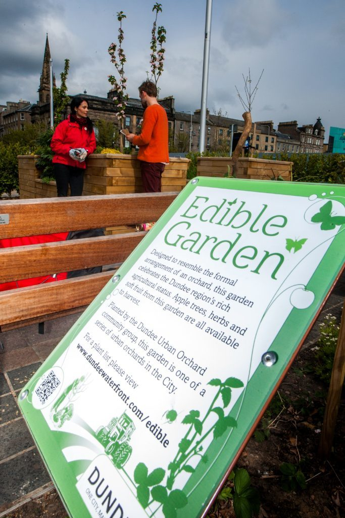The edible garden and orchard boasts an abundance of produce - and it's free!