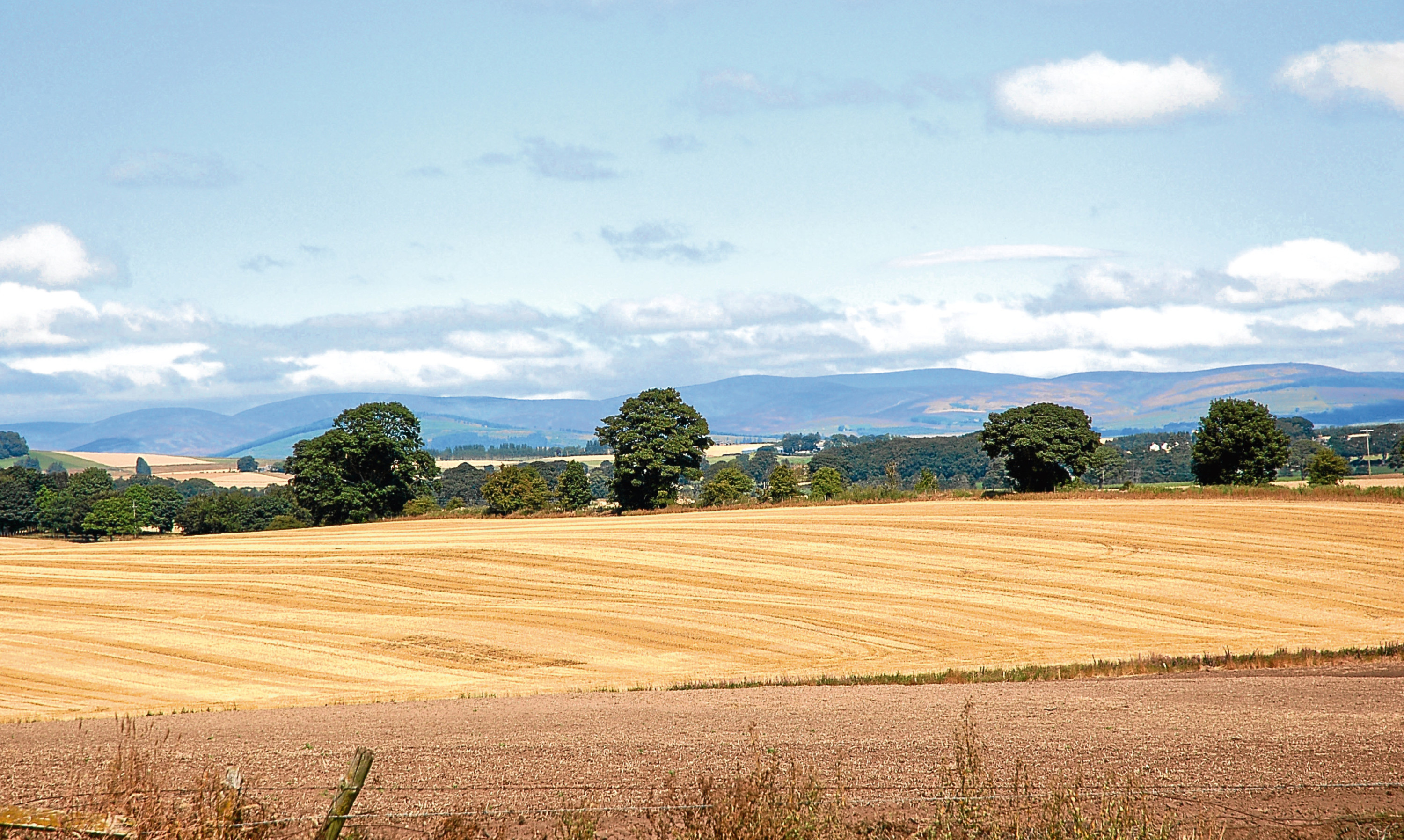 The carefully tended landscape of Strathmore between Perth and Forfar.