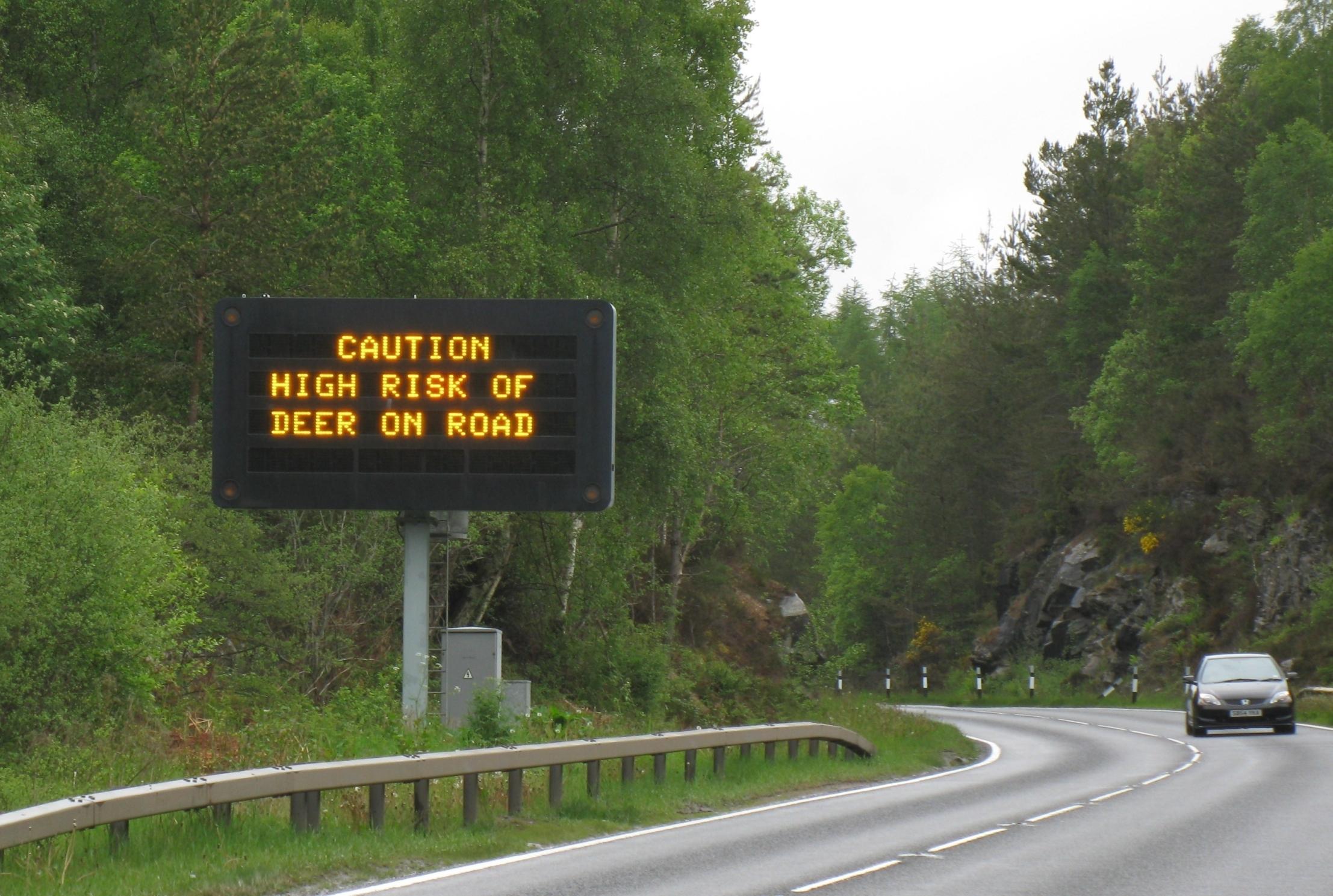 A deer warning sign.