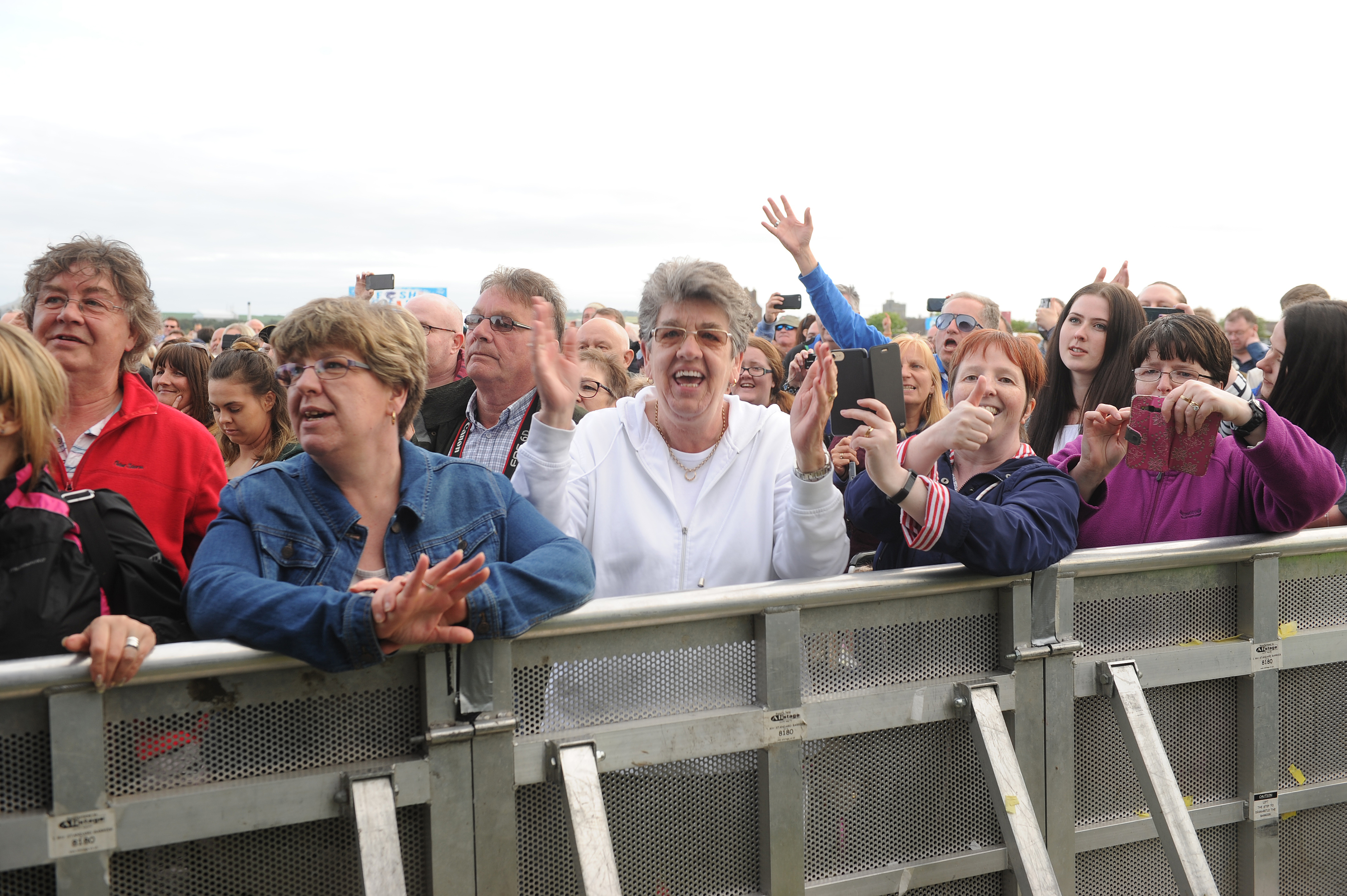 MoFest fans enjoying the Beach Boys in 2017.