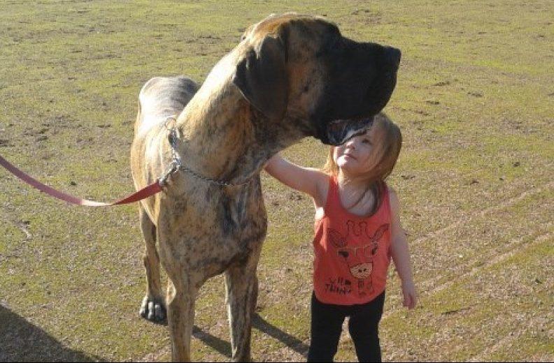 Zeus with Kerry's daughter Chloe-Margaret Stewart.