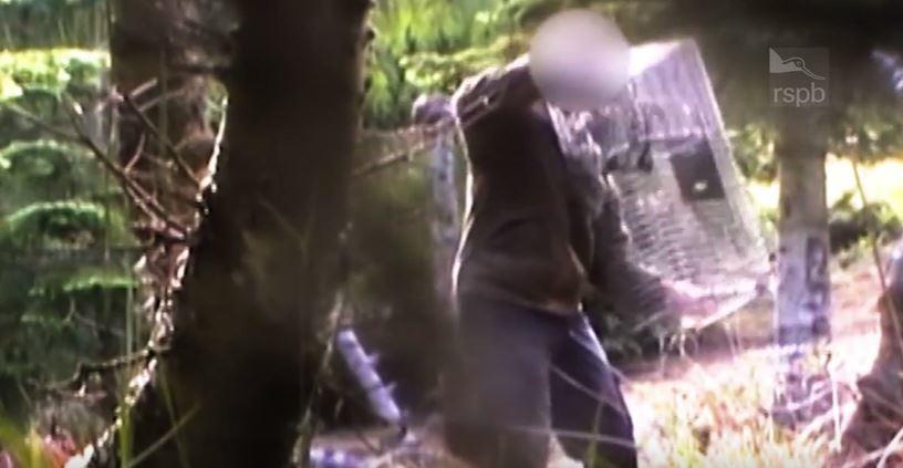 Alleged illegally set spring trap on Brewlands Estate