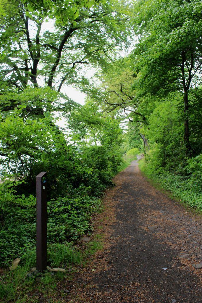 1 - Coastal path - James Carron, Take a Hike