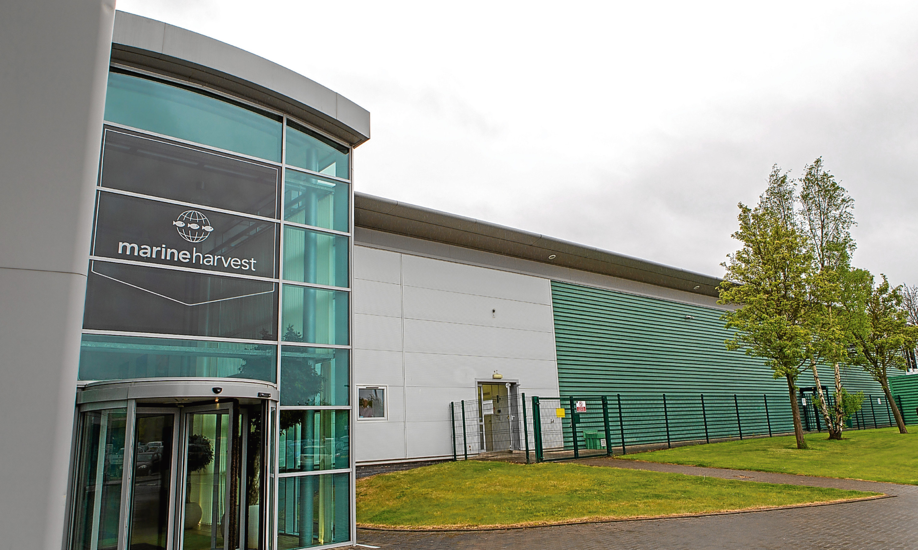 Marine Harvest's base at Admiralty Park in Rosyth