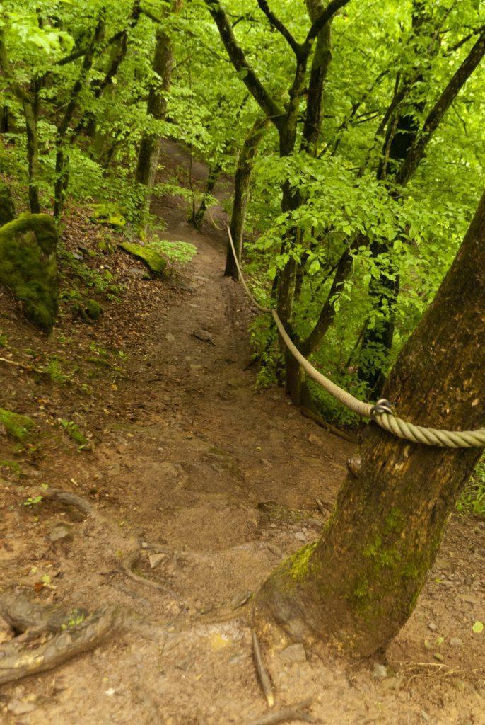 On the hiking trail Eifelsteig in the Eifel National Park.