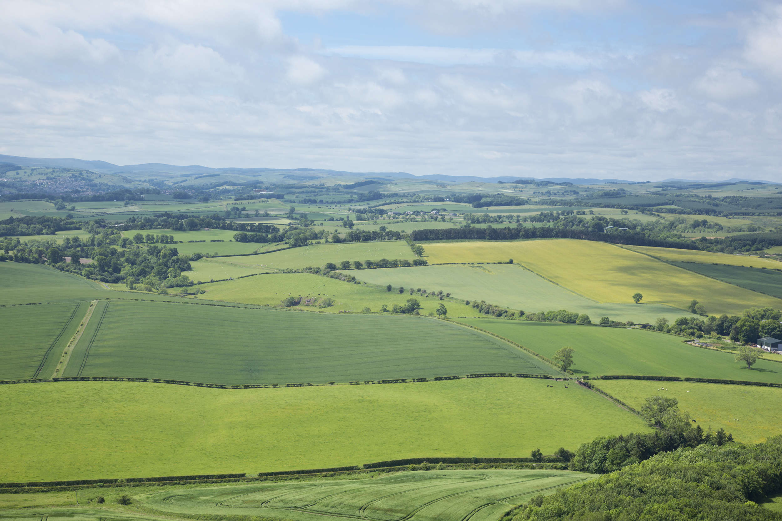 More acres can be bought for the same money in Scotland