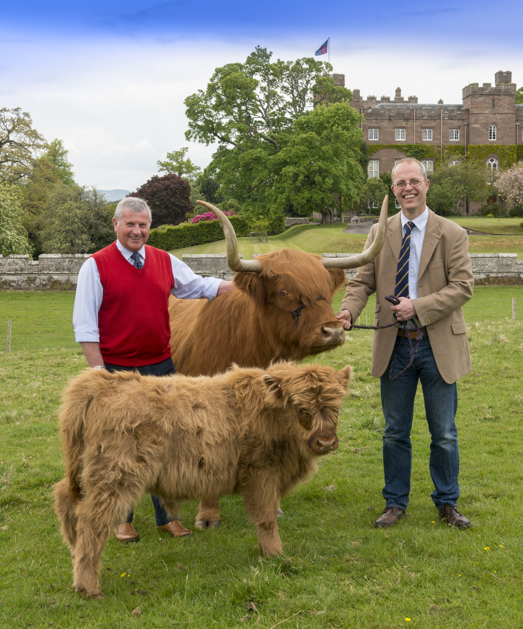 Some of the finest cattle in the country will be on show at Perth