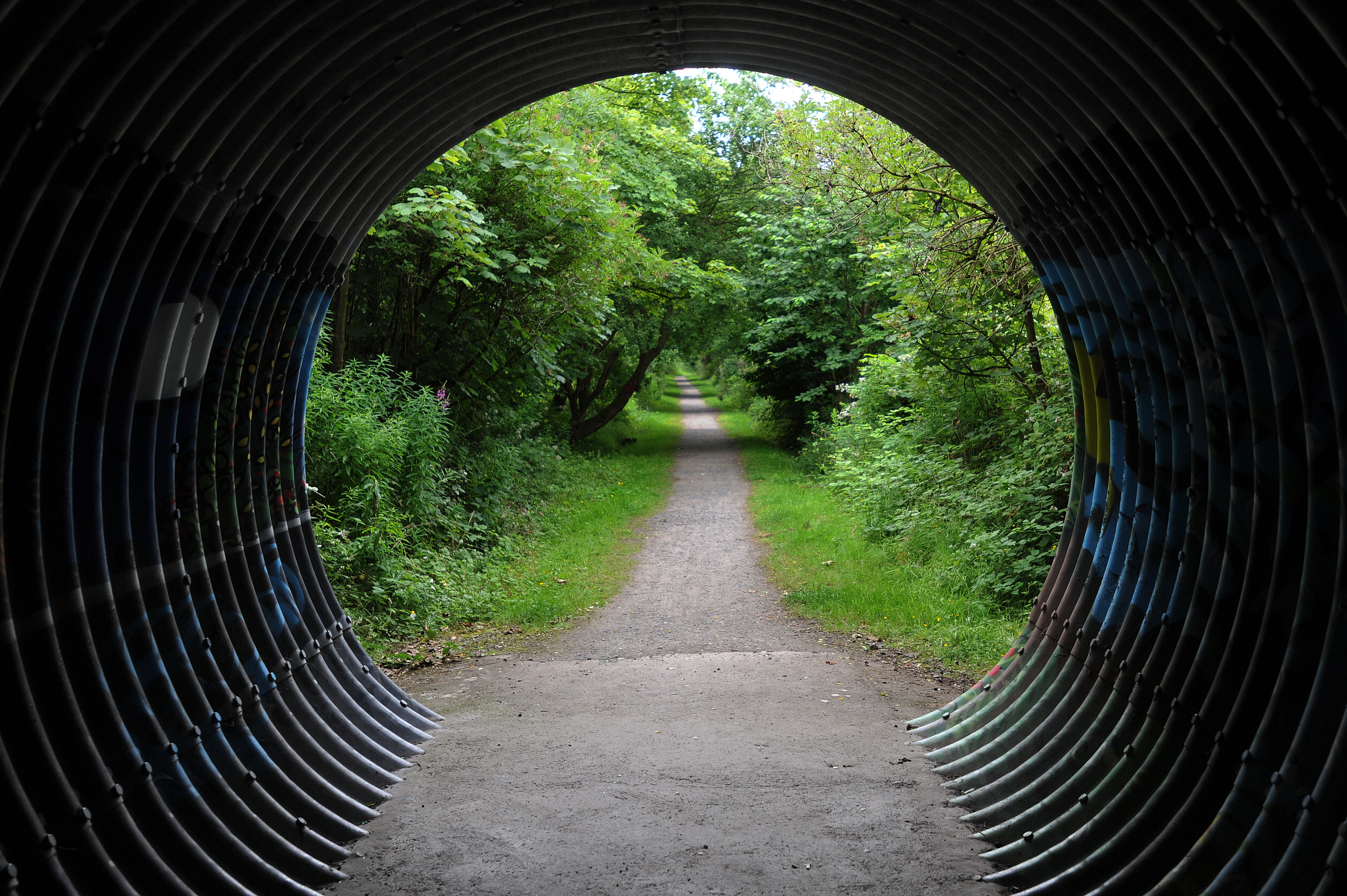 "The footpath through the Scottish Wildlife Trust's ""The Miley"" wildlife reserve."