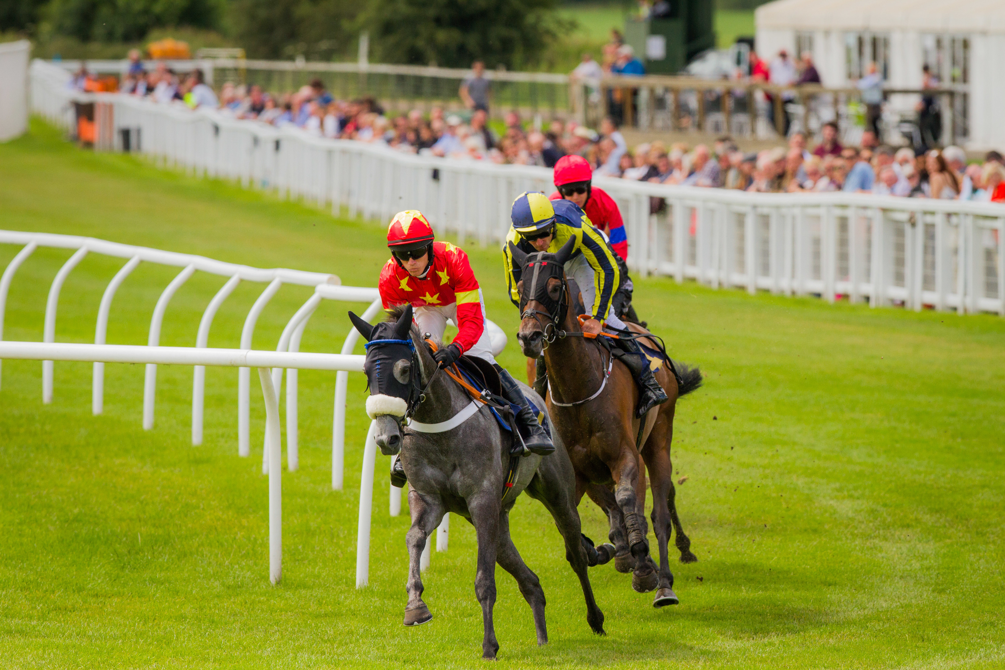 Race meeting at Perth Racecourse.