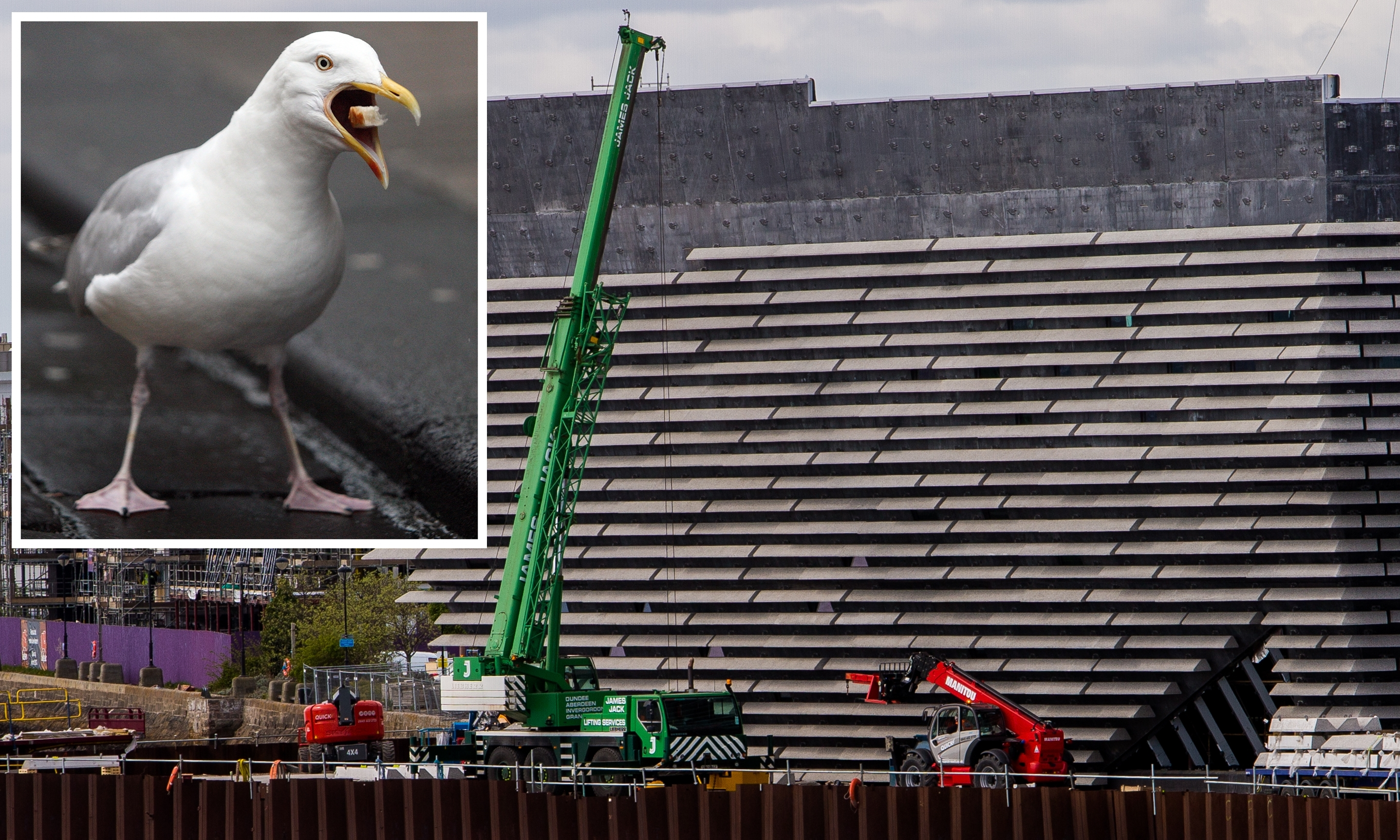V&A chiefs believe the tiered exterior will not be to the liking of the city's gull population.