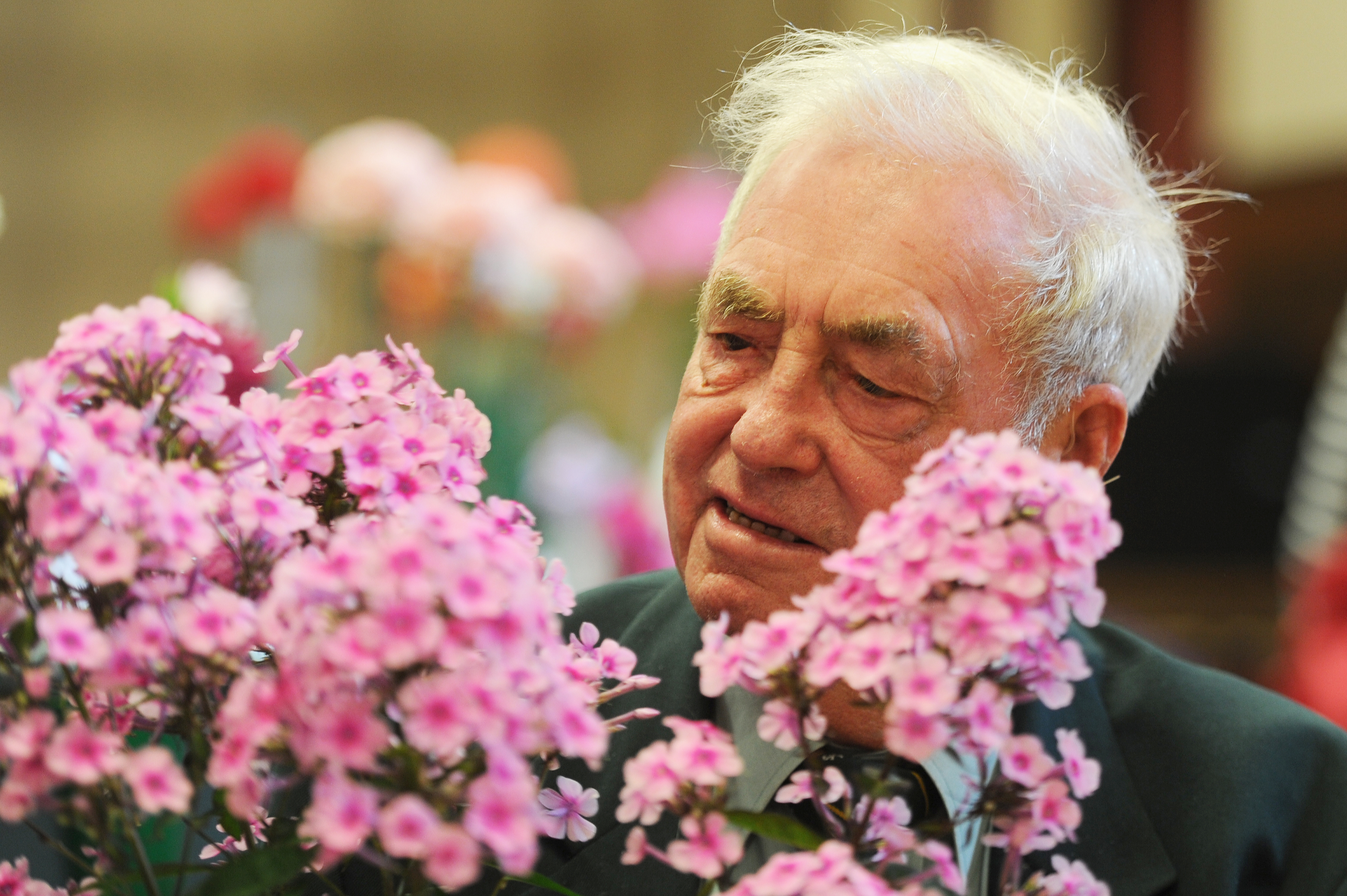 Forfar Horticultural Society Chairman, Les Craib with his phlox plant.