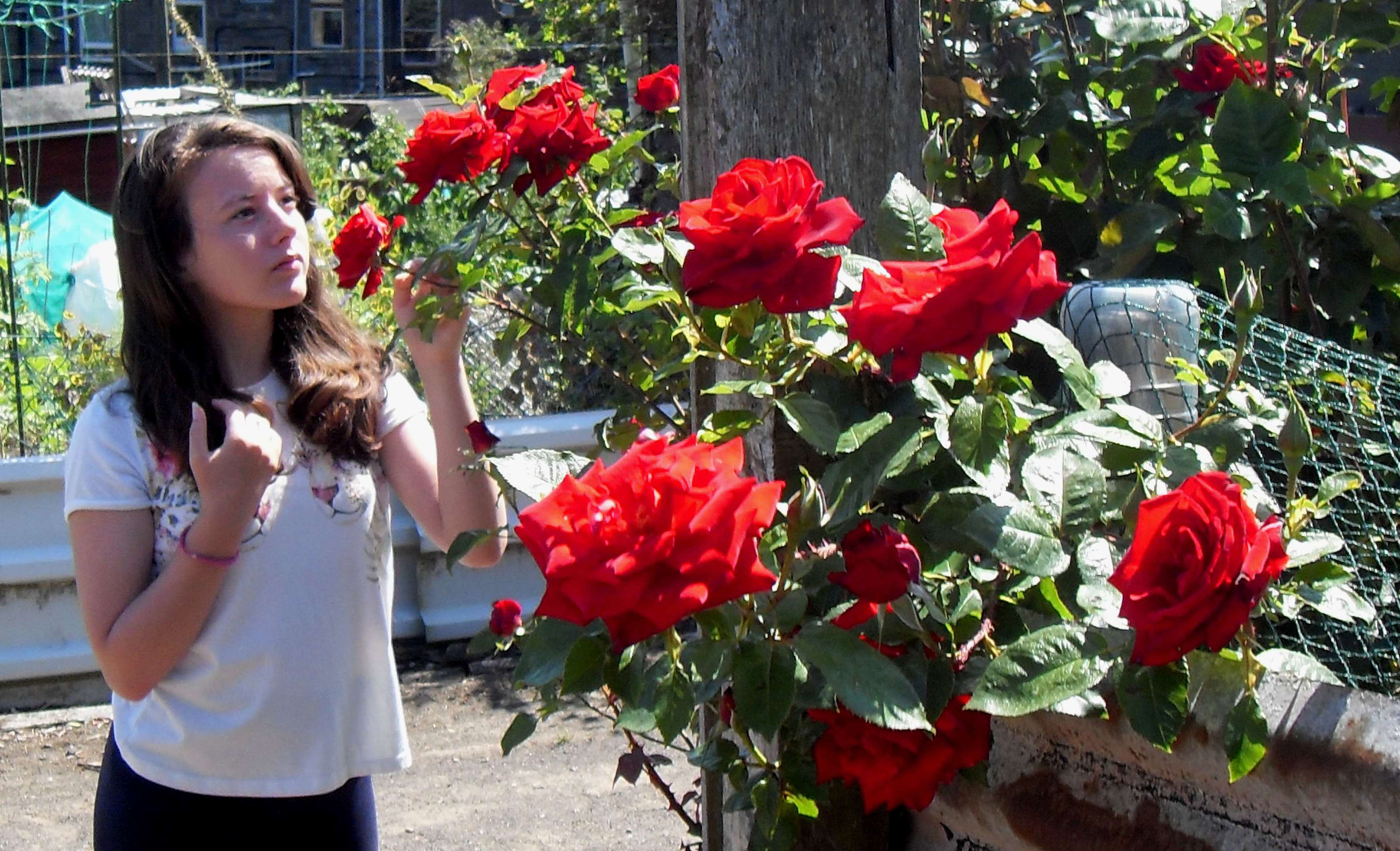 Sophie with scented roses