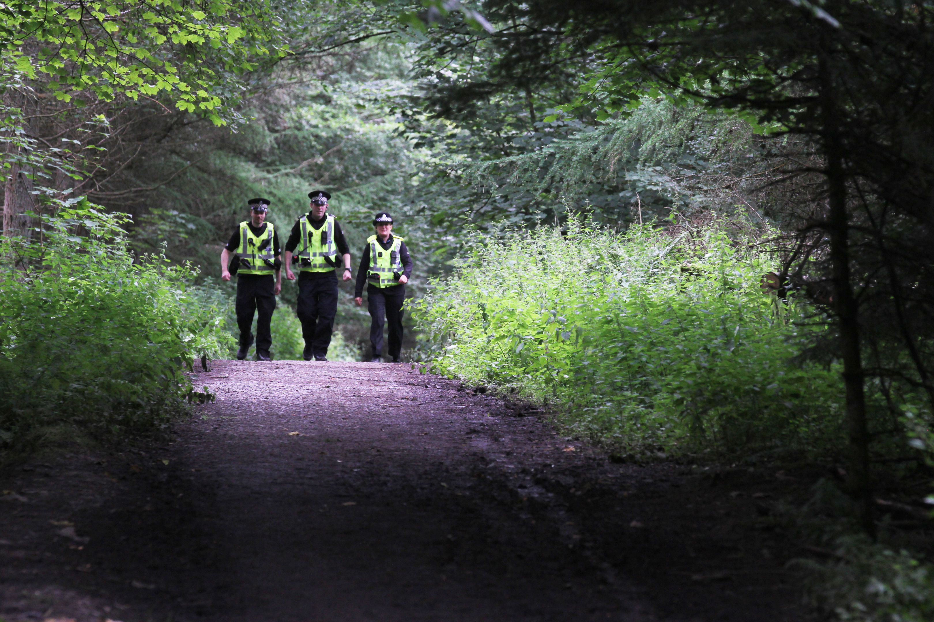 Police officers searching for evidence in Templeton Woods.