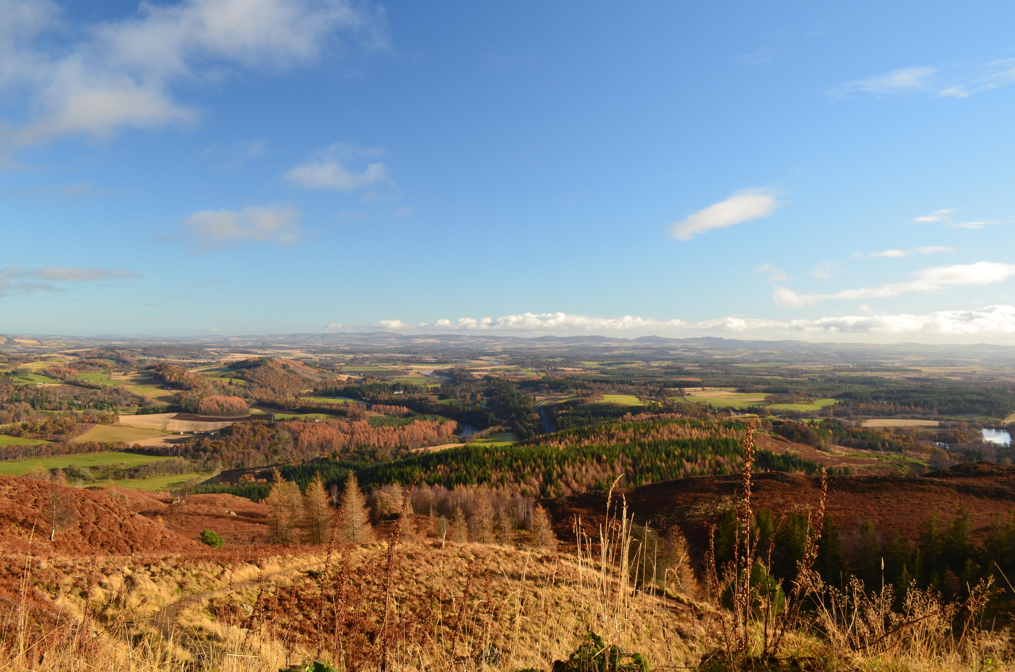 Birnam Hill.