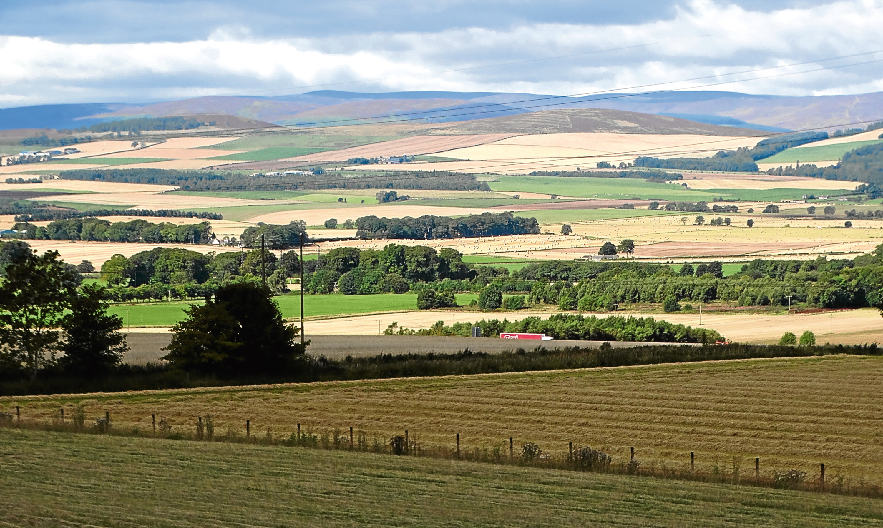 A patchwork of butter-golden harvest fields in Strathmore, a view much enjoyed by Angus.