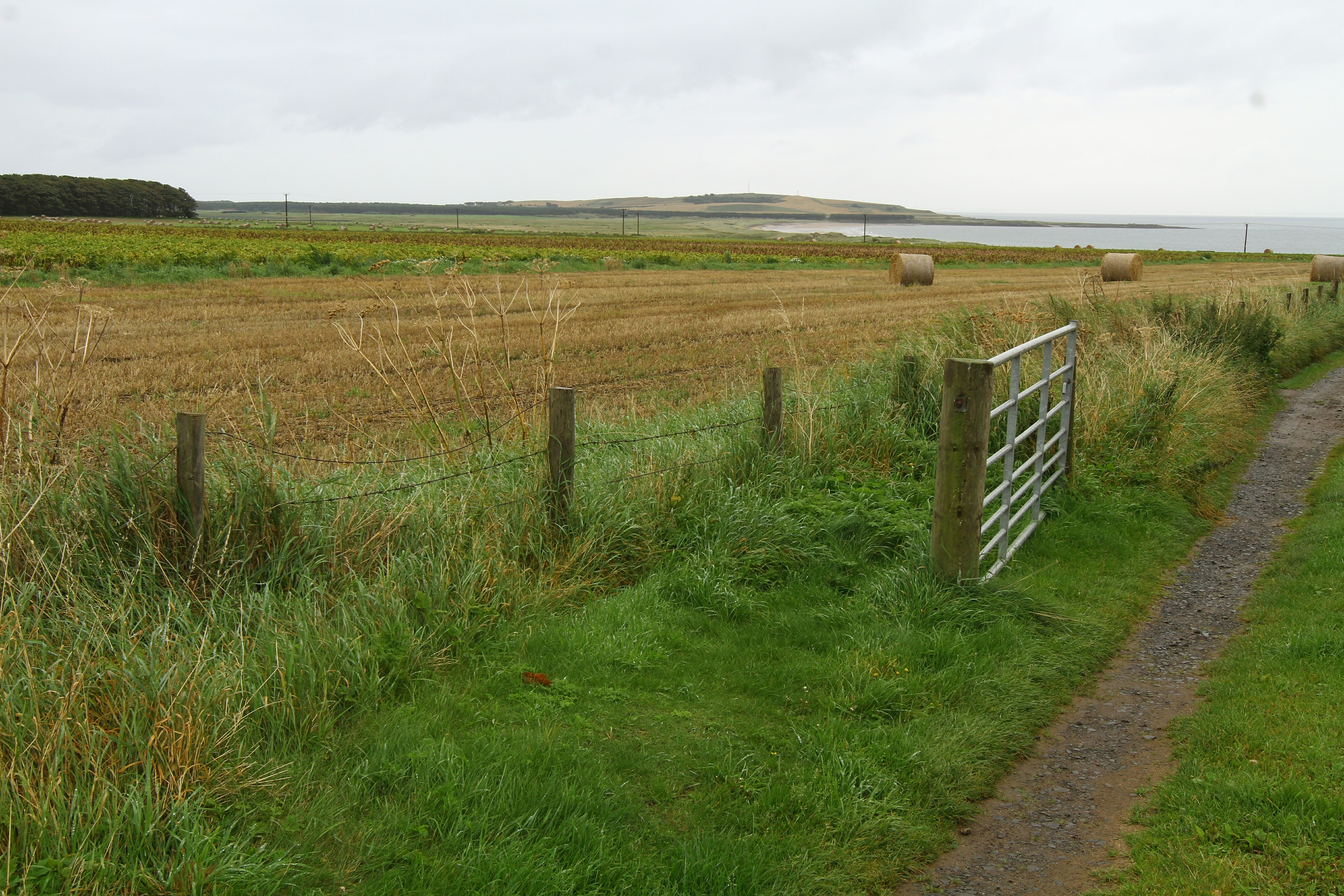 Dumbarnie Links could become an 18-hole golf course.