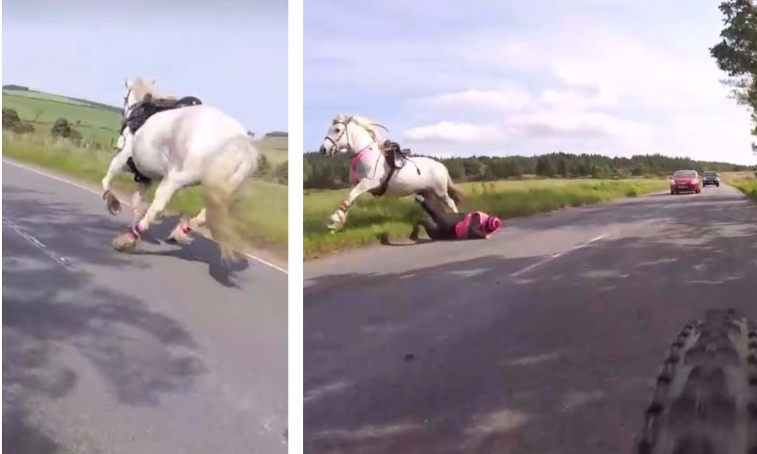 The horse was frightened by the overtaking lorry.