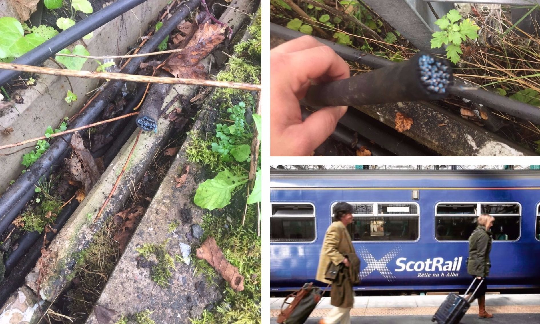 ScotRail shared these photos from the scene of the crime