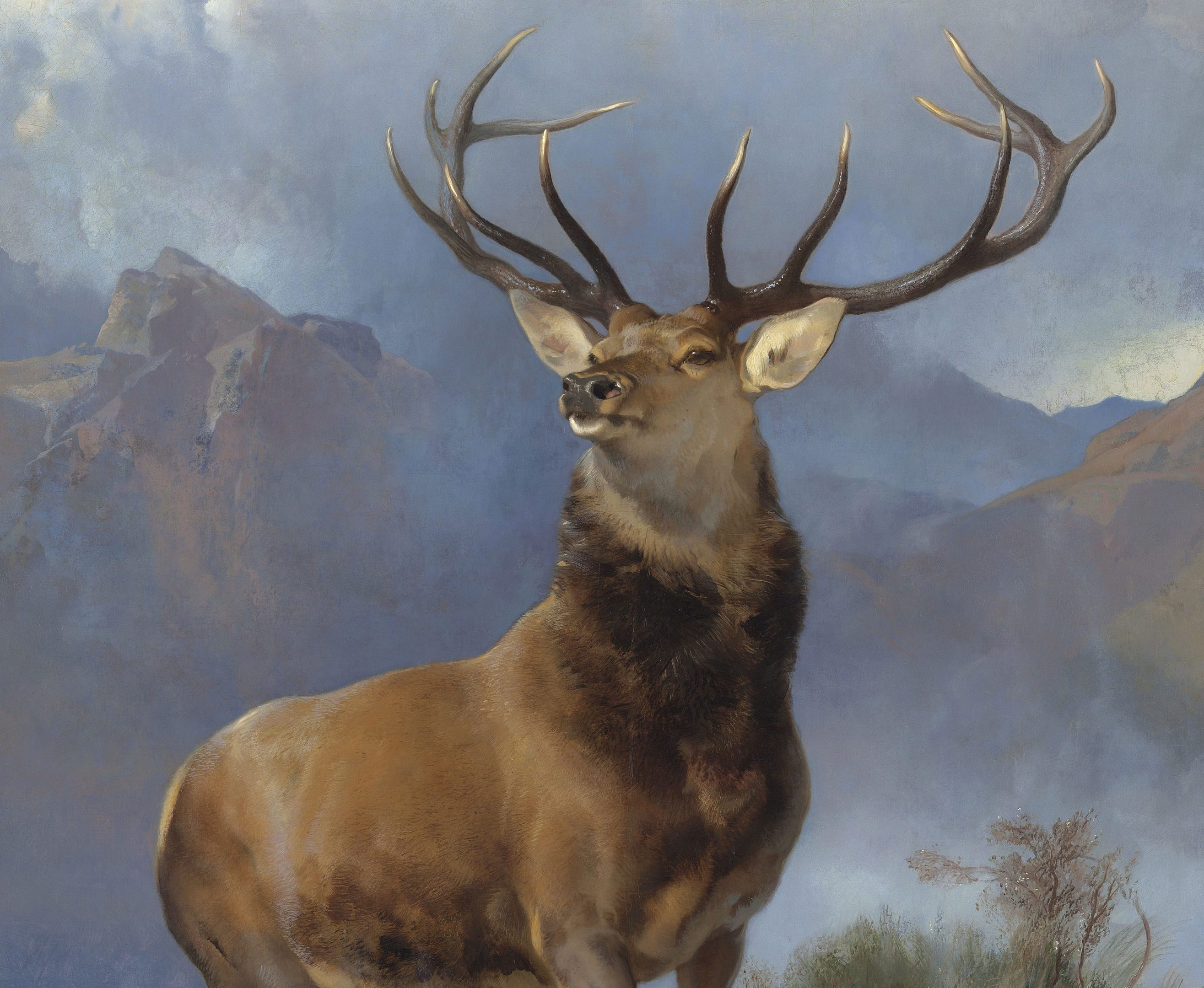 Monarch of the Glen.
