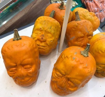The Frankenstein pumpkins at Morrisons. Which could be confused for the famous McManus shrunken heads. If you squint.