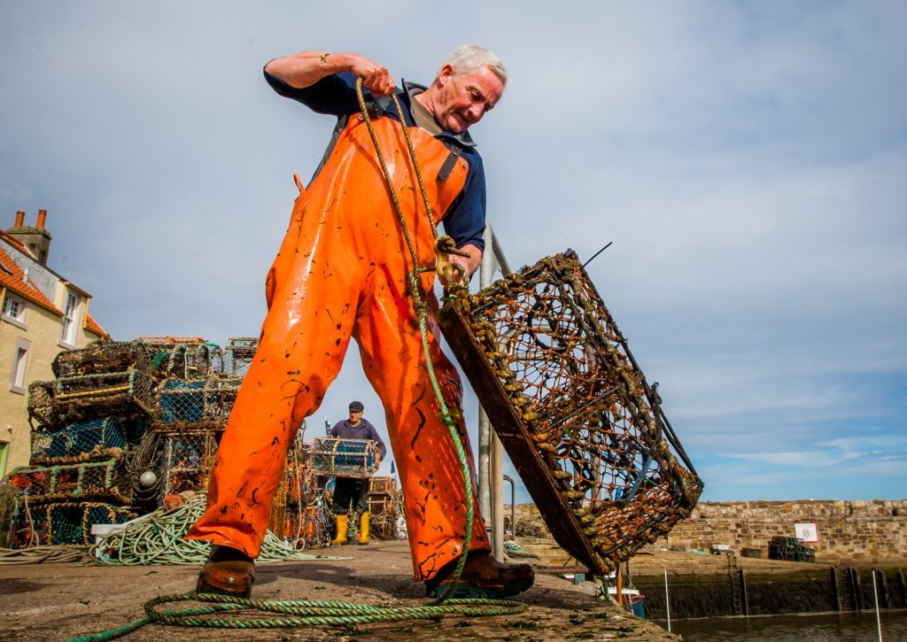 Fisherman Dave Martin hauling creels from the boat Brothers in Arms at St Andrews Harbour