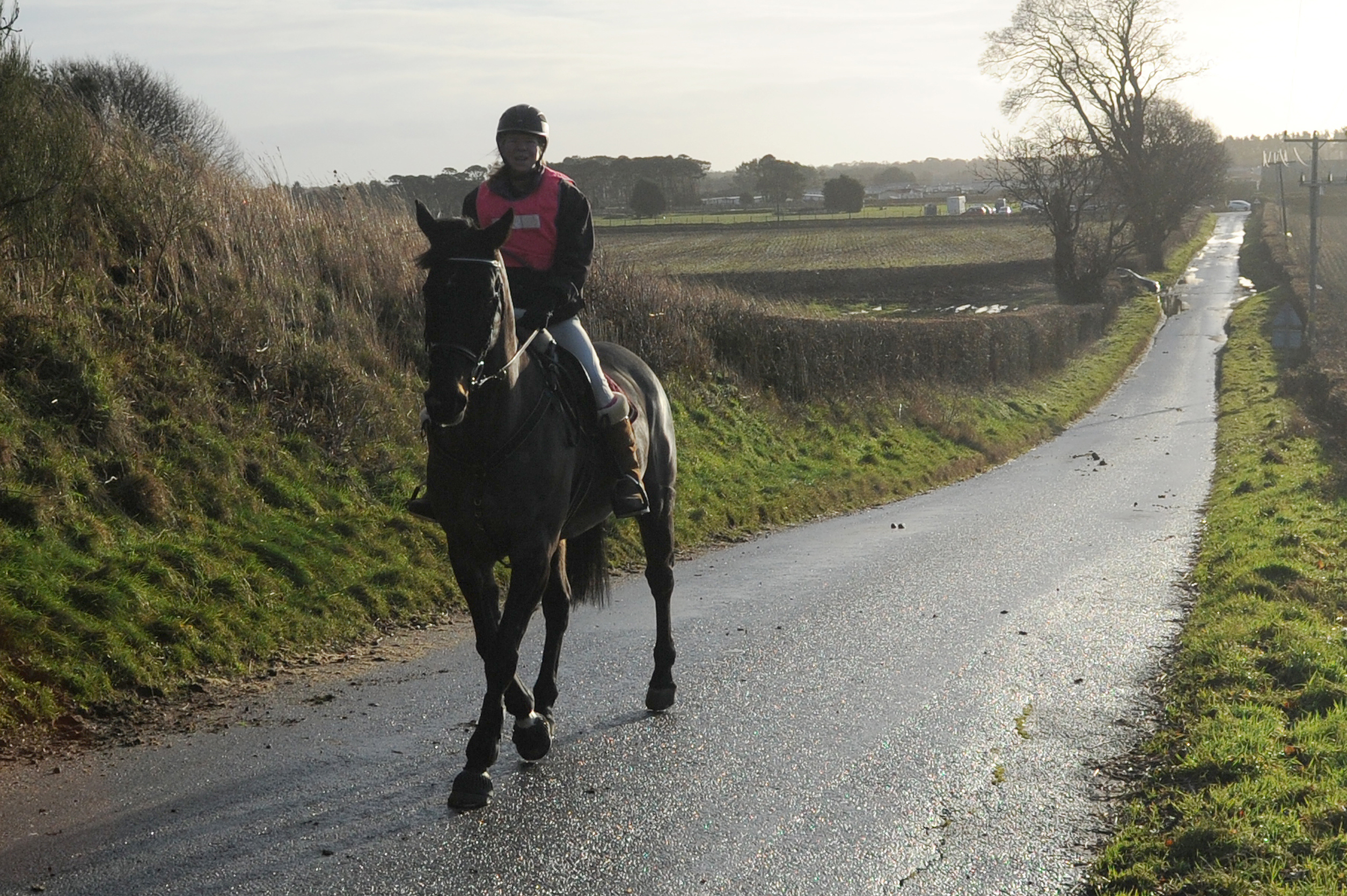 Willie Rennie, MSP for North East Fife, has called on motorists to show horse riders more consideration following a number of complaints.