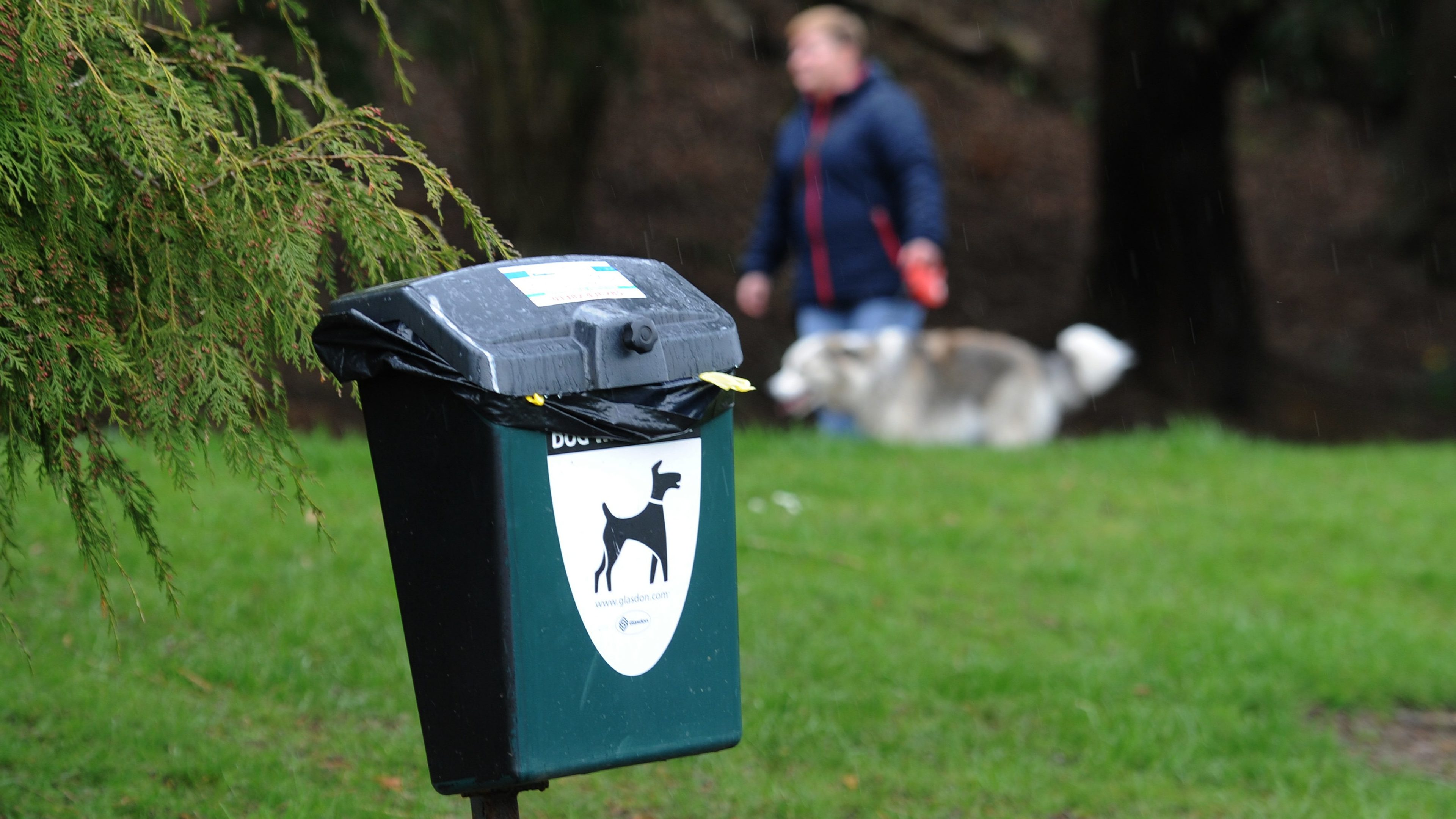 The initiative would also tackle dog fouling
