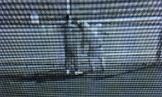 The two intruders caught on CCTV.