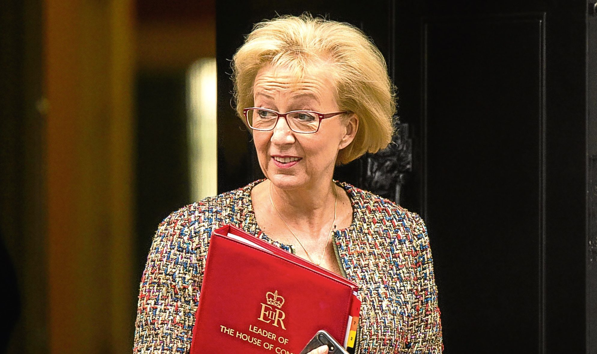 Andrea Leadsom insists she did not ask the Prime Minister to sack Defence Secretary Sir Michael Fallon.