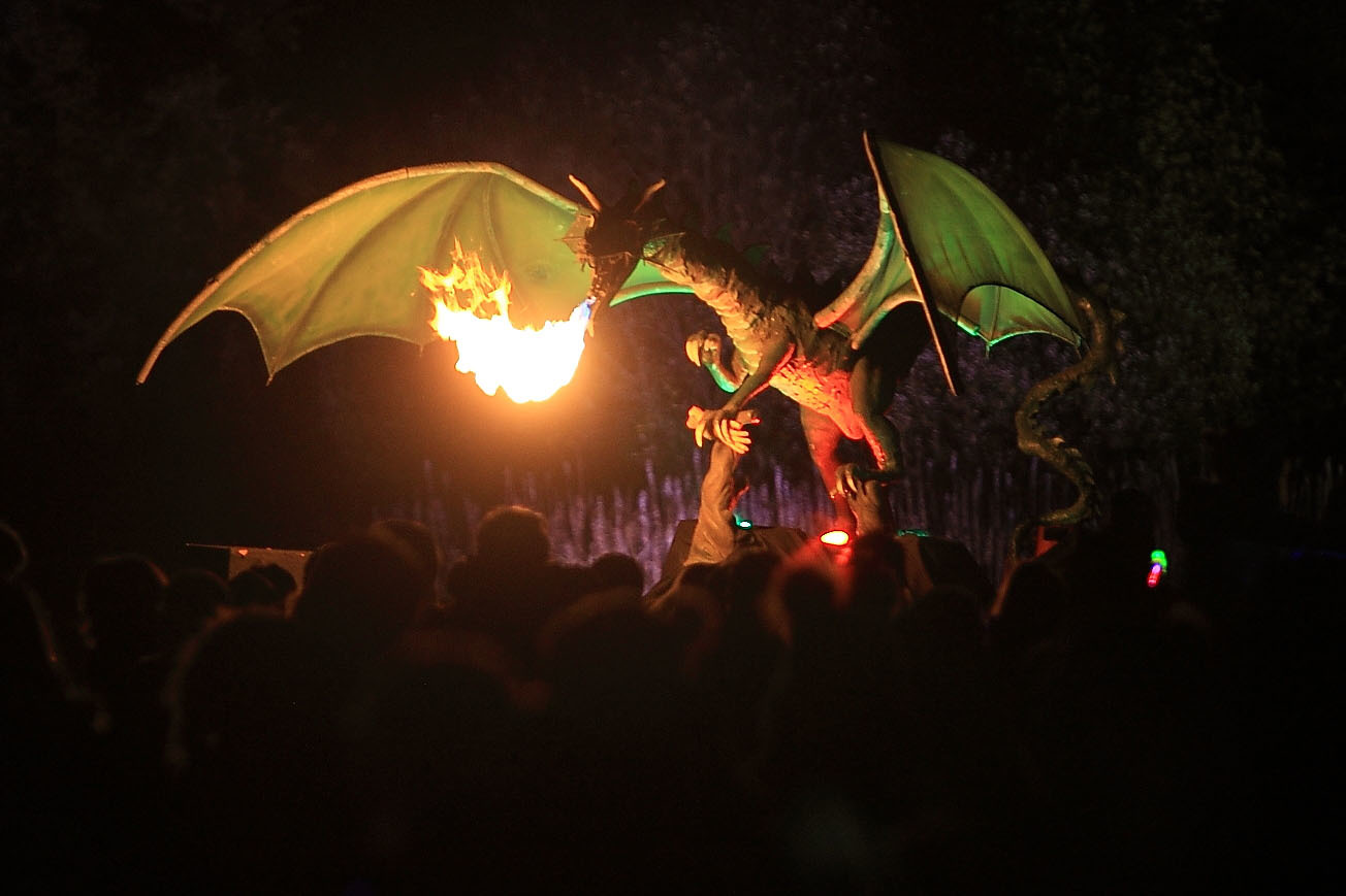 A dragon at the Coupar Angus fireworks.