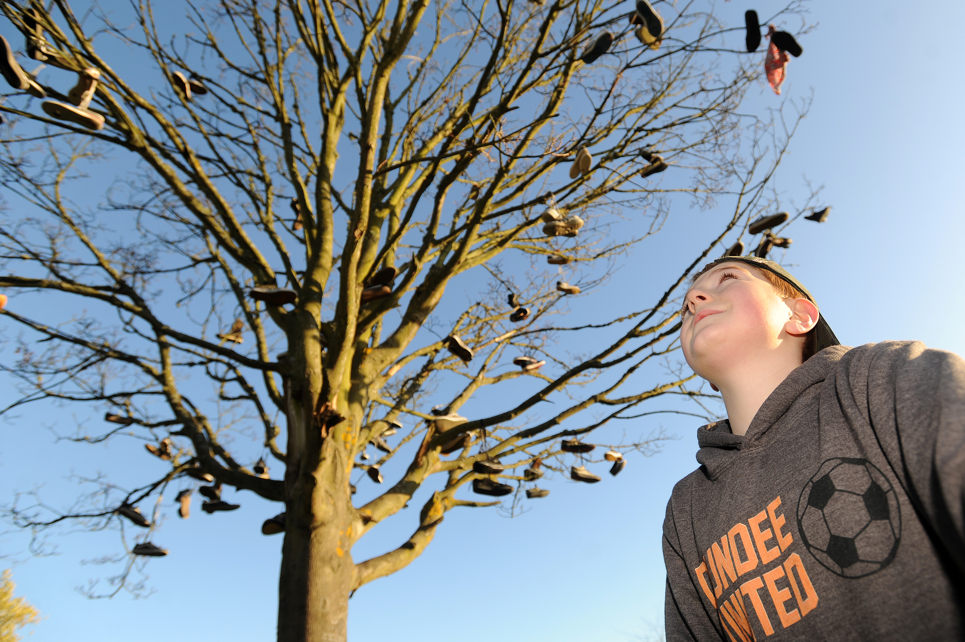 Logan McKinlay, 10, checking out the unusual tree.