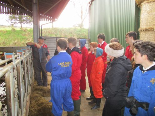 Farmer Sandy Thomson hosts weekly visits to the farm for Breadalbane  Academy's pupils