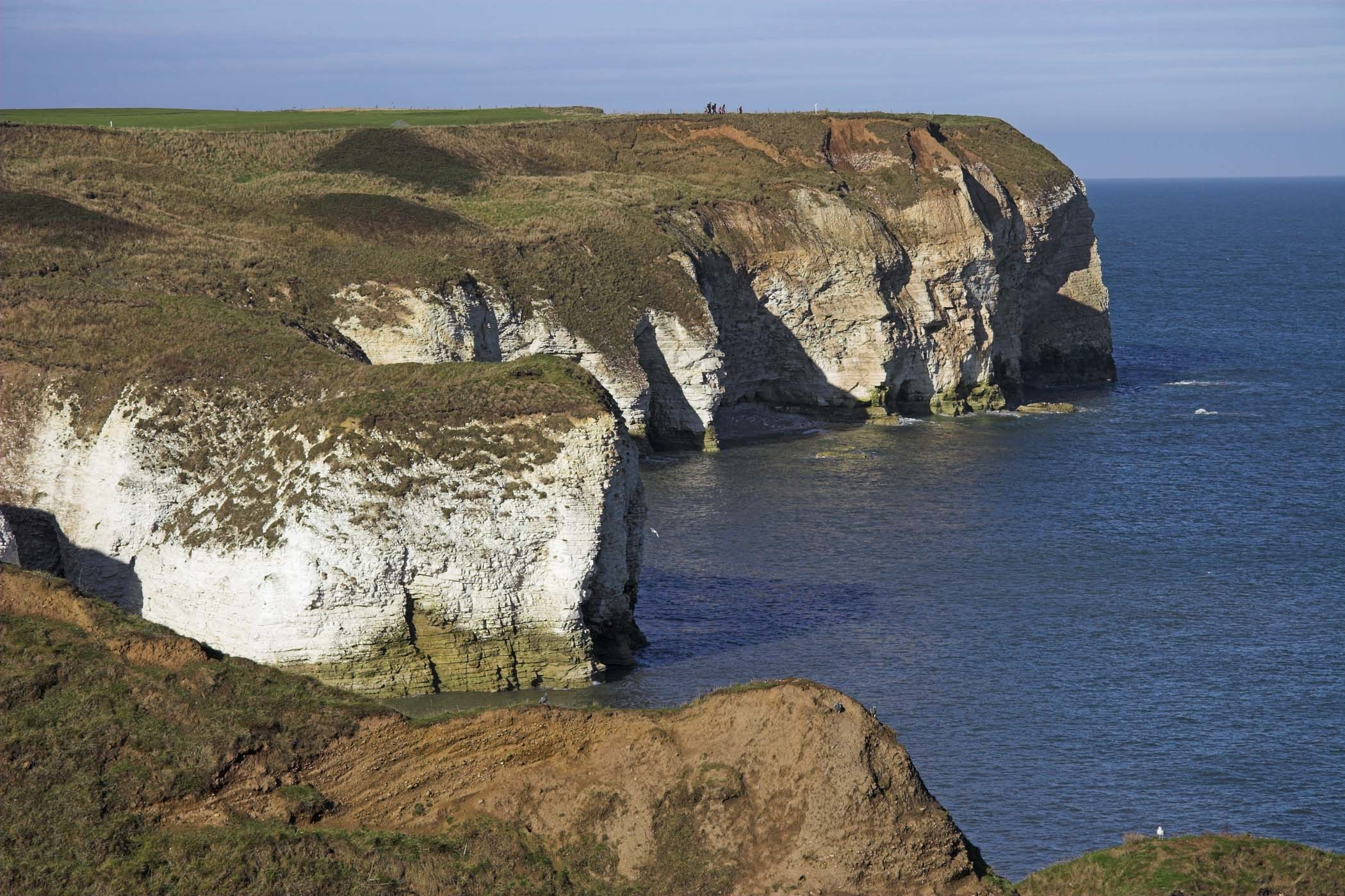 Chalk cliffs at Selwicks Bay, Flamborough Head, North Yorkshire, England