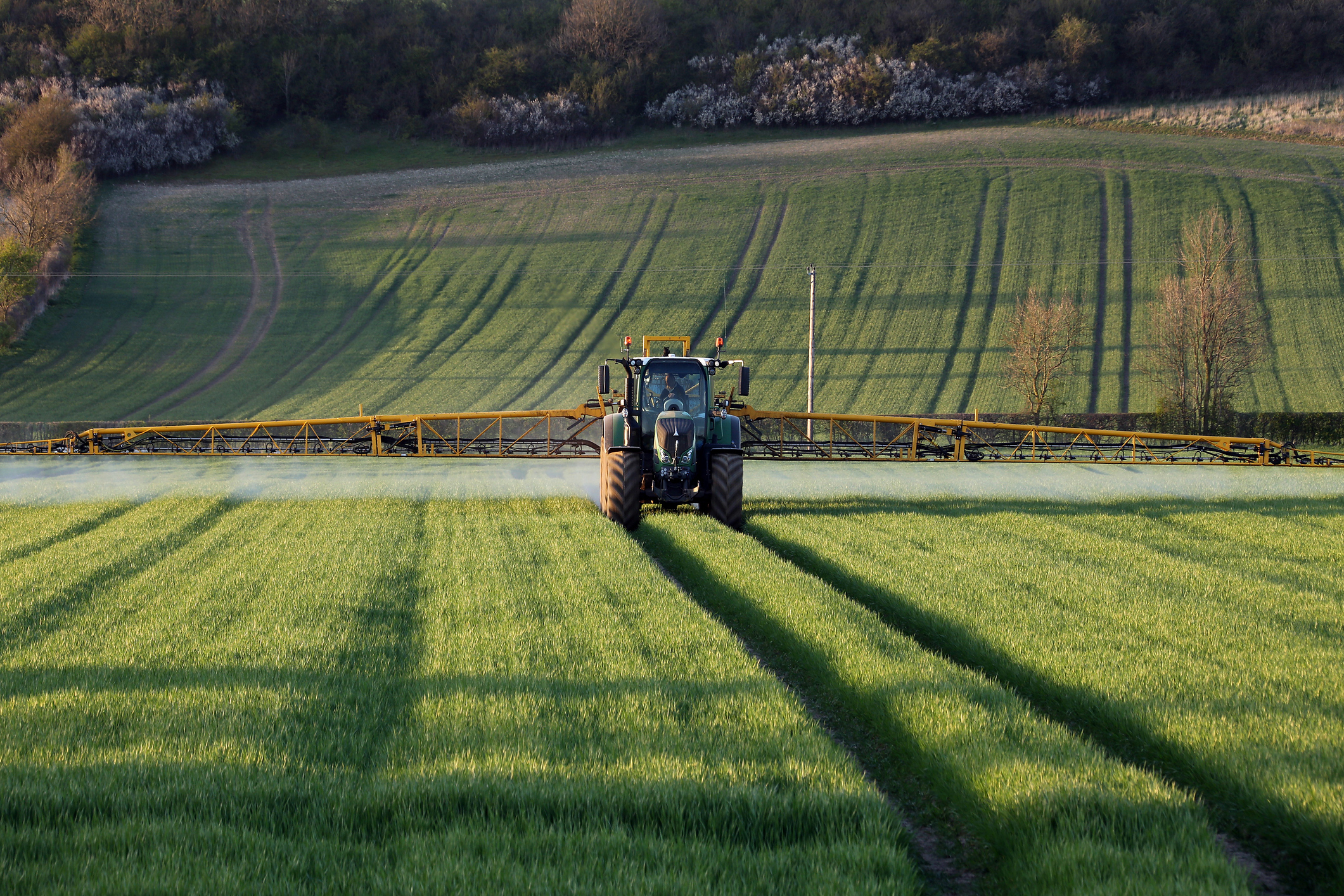 Farming organisations are desperate for clarity on the future of the chemical