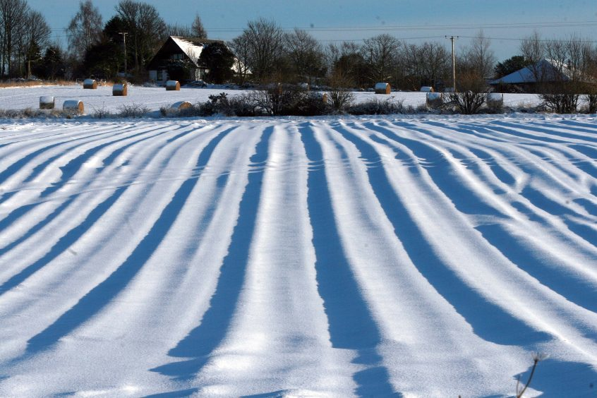 A snow covered, ploughed field (near Marykirk) creating interesting patterns in the low winter sun (2010).