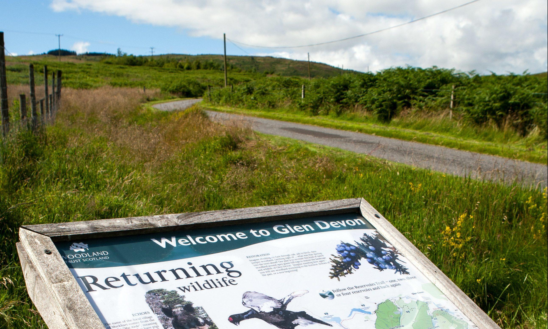 Rural Glen Devon is now an oasis of calm.