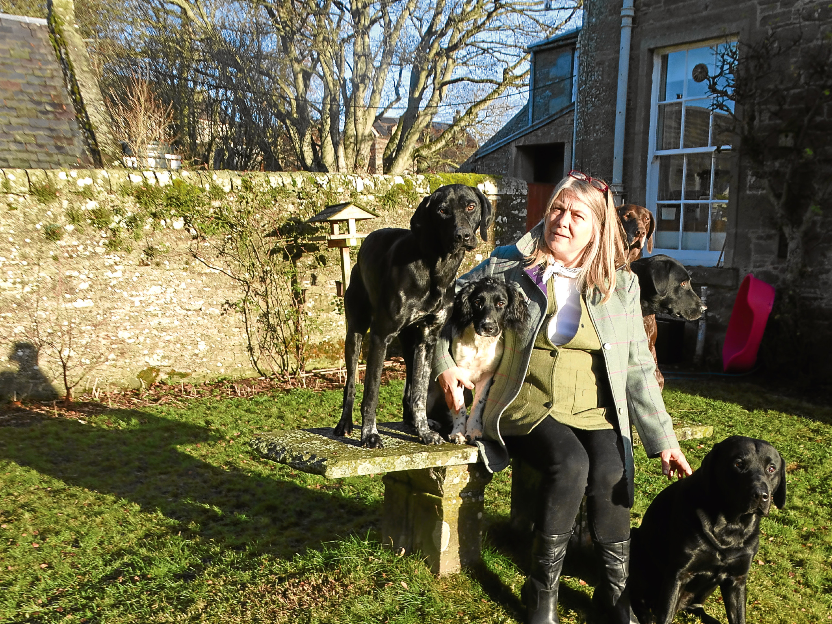 Supplied pic taken by Angus Whitson for his column. Carol Begg with some of her rescue gundogs.