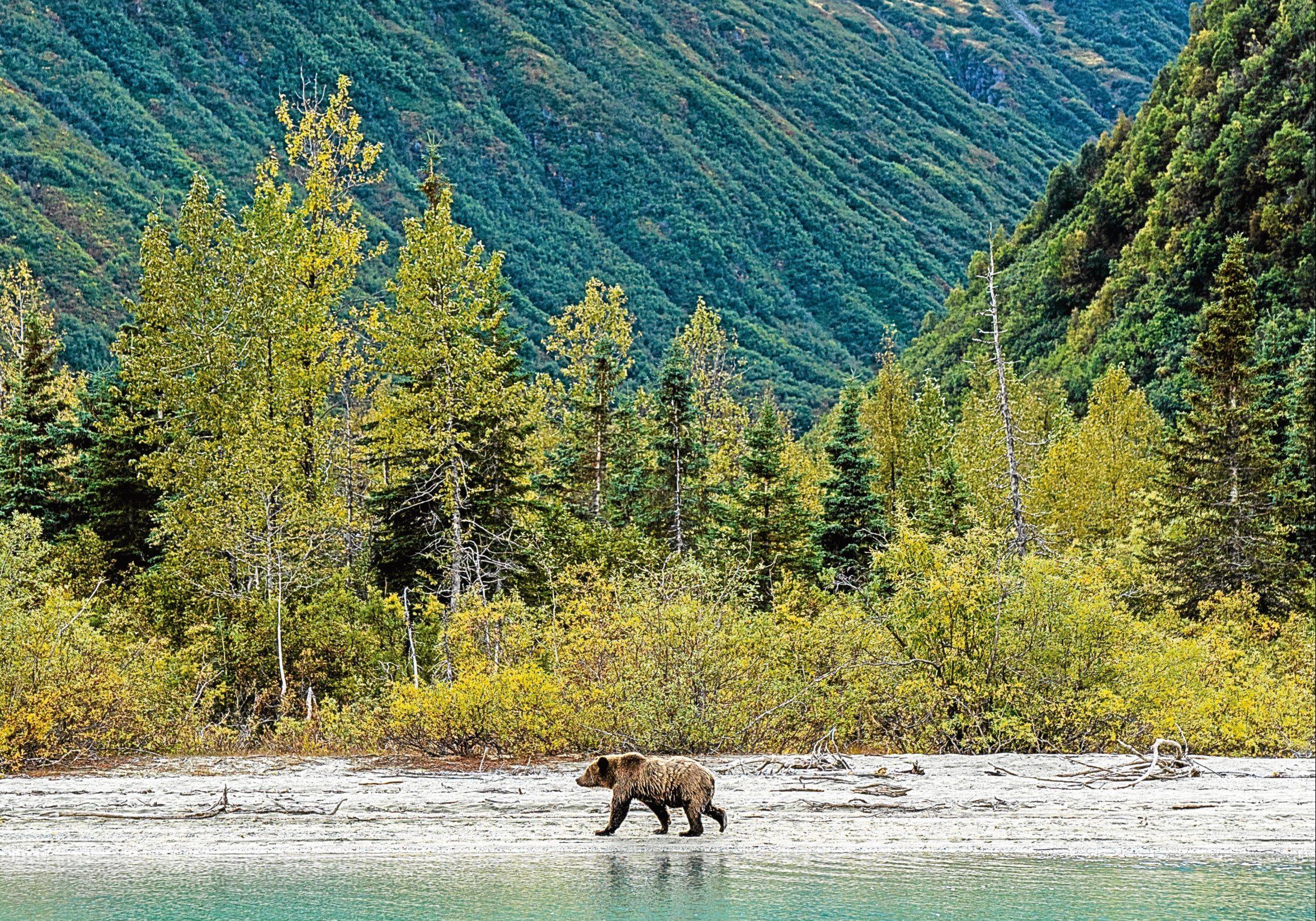 Alaska — an awe-inspiring place.