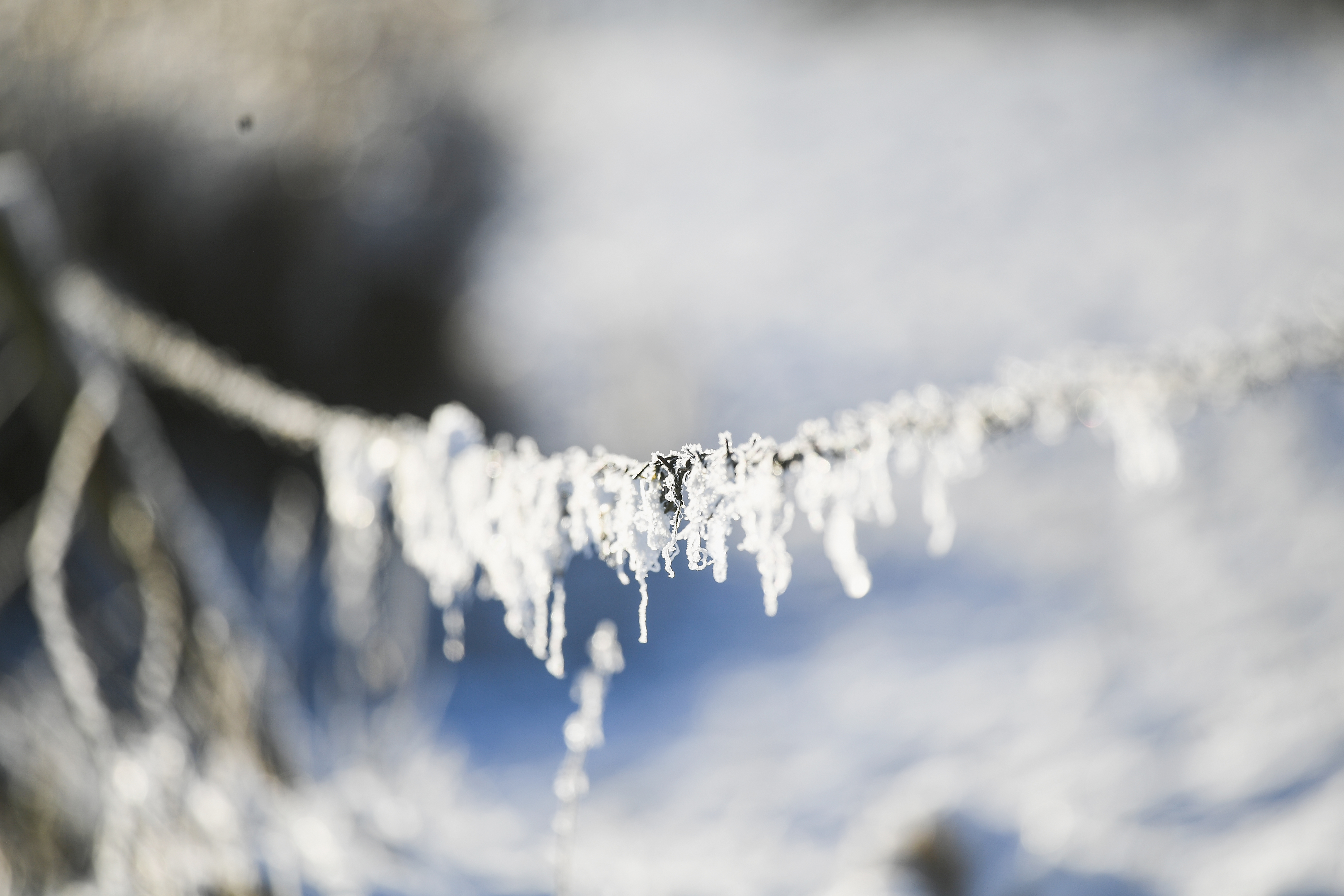 Ice forms on a fence as temperatures drop across the country.