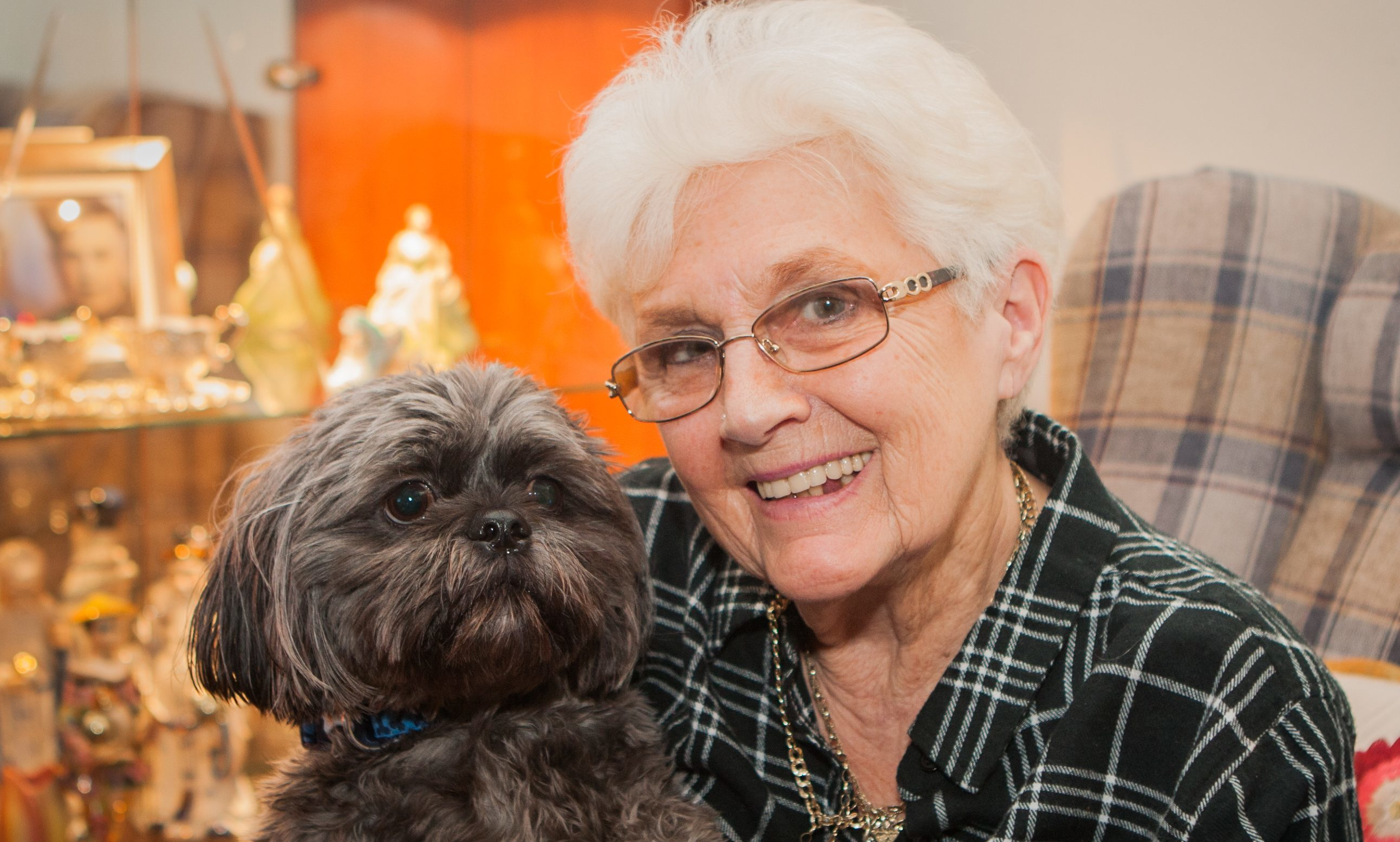 Benji, safely back home with owner Joan.