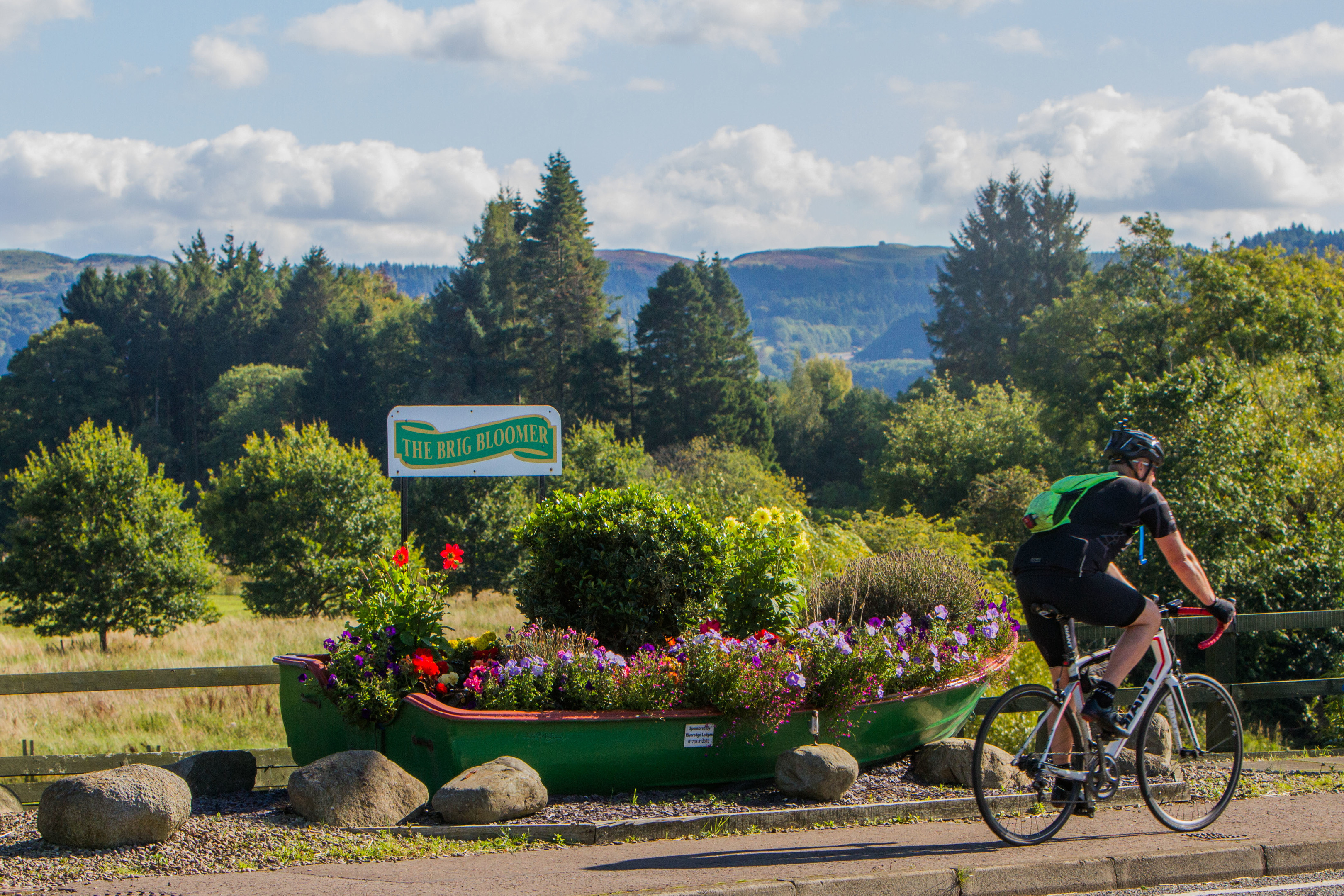 Brig in Bloom enjoyed gold medal success at the 2017 Take a Pride in Perthshire awards. Now committee members hope to deliver a new community garden by the end on June.