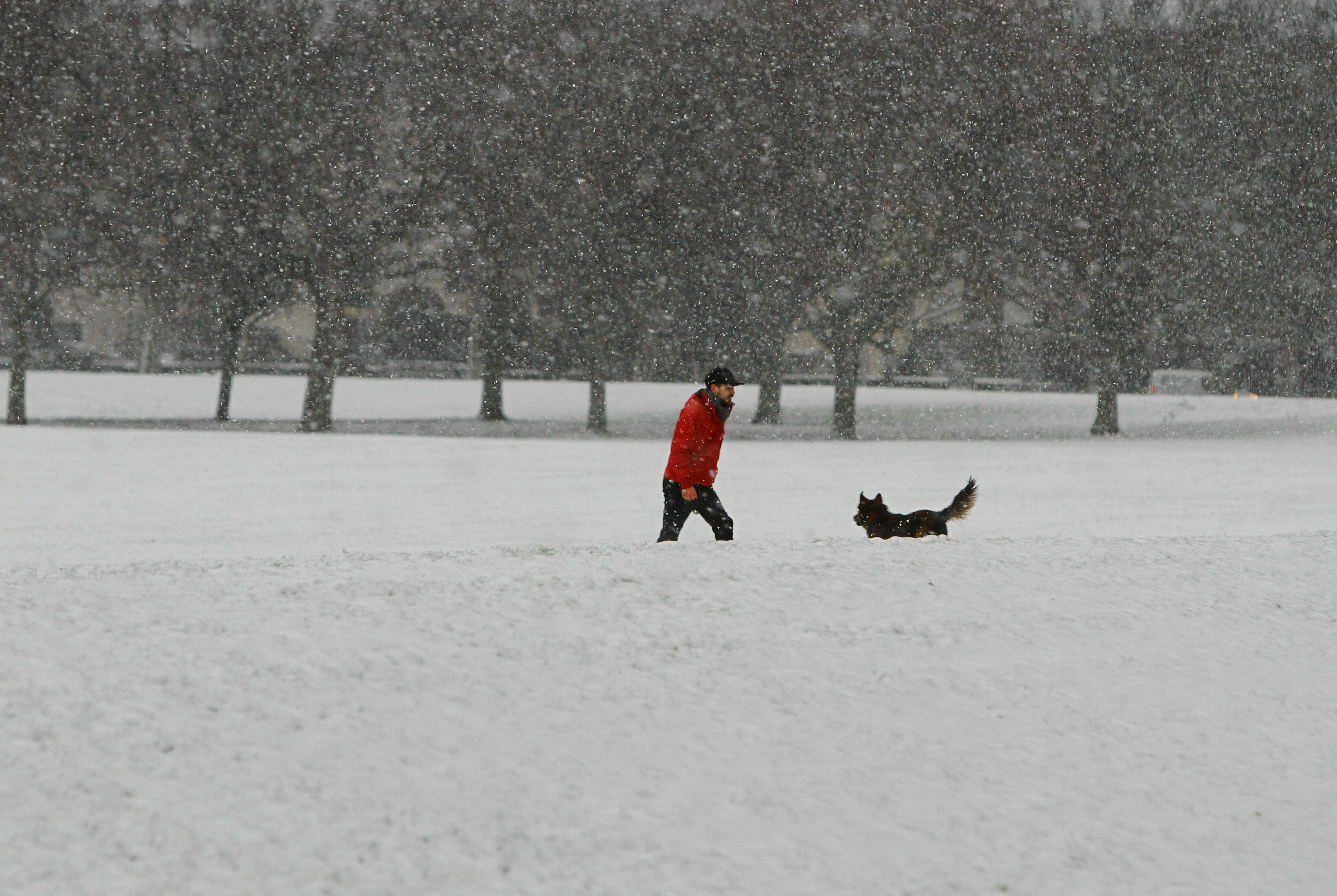 Snow on the South Inch in Perth.