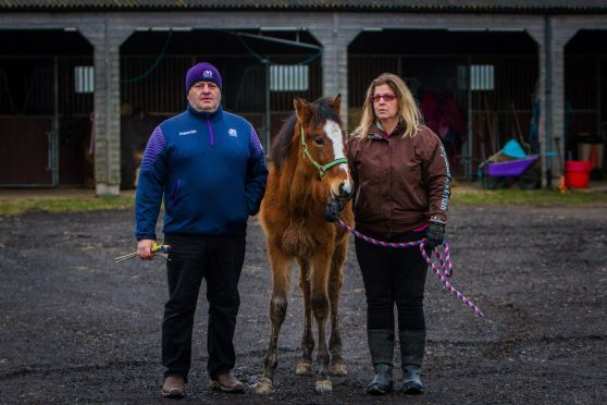 Neil and Pam Walker with the filly 'Umbrella'.