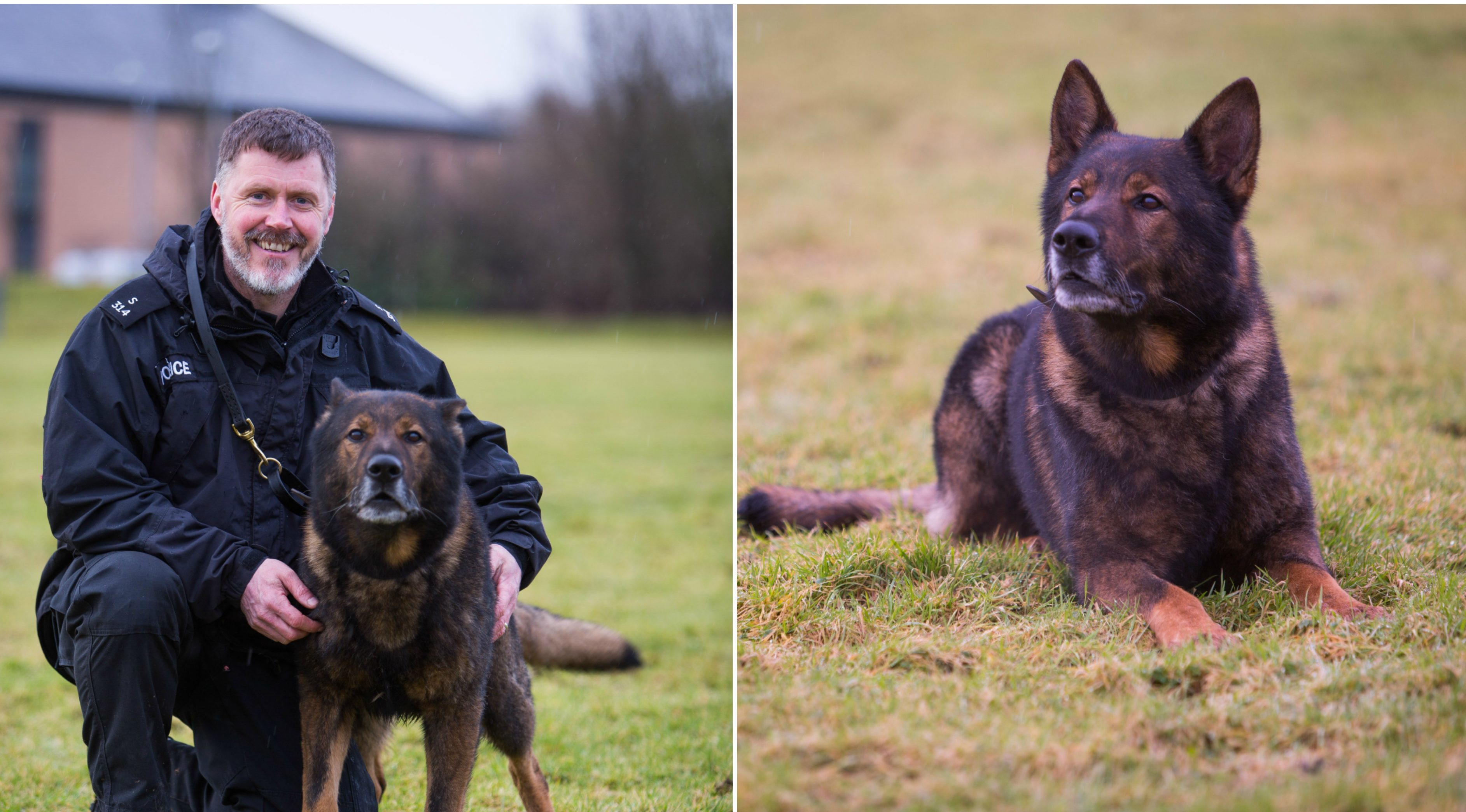 Axel the police dog with handler PC Craig Menzies